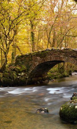 25333 скачать обои Пейзаж, Река, Мосты, Деревья - заставки и картинки бесплатно
