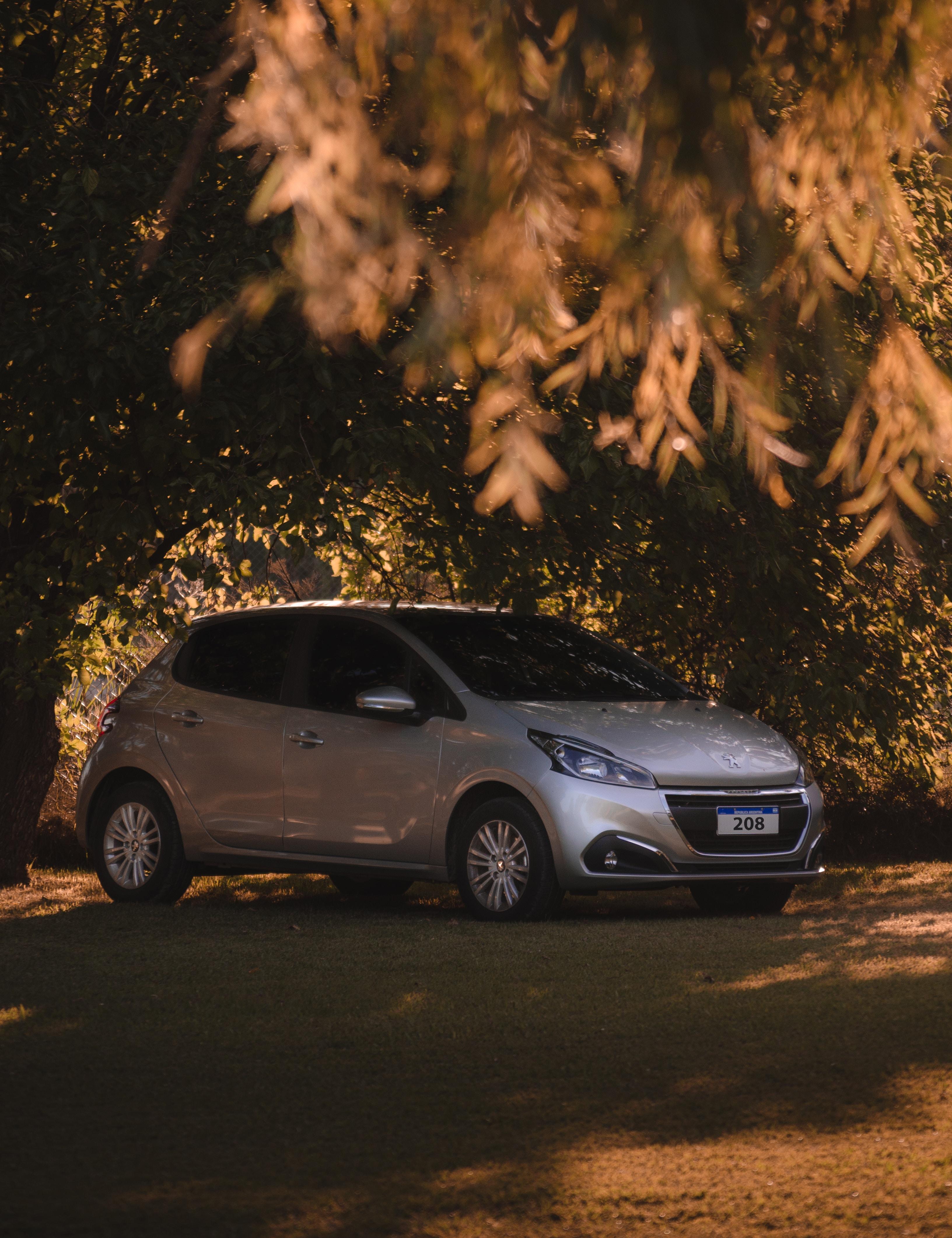 114169 скачать обои Пежо (Peugeot), Тачки (Cars), Машина, Серый, Серебристый - заставки и картинки бесплатно
