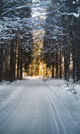 108376 Salvapantallas y fondos de pantalla Nieve en tu teléfono. Descarga imágenes de Naturaleza, Invierno, Nieve, Camino, Árboles gratis