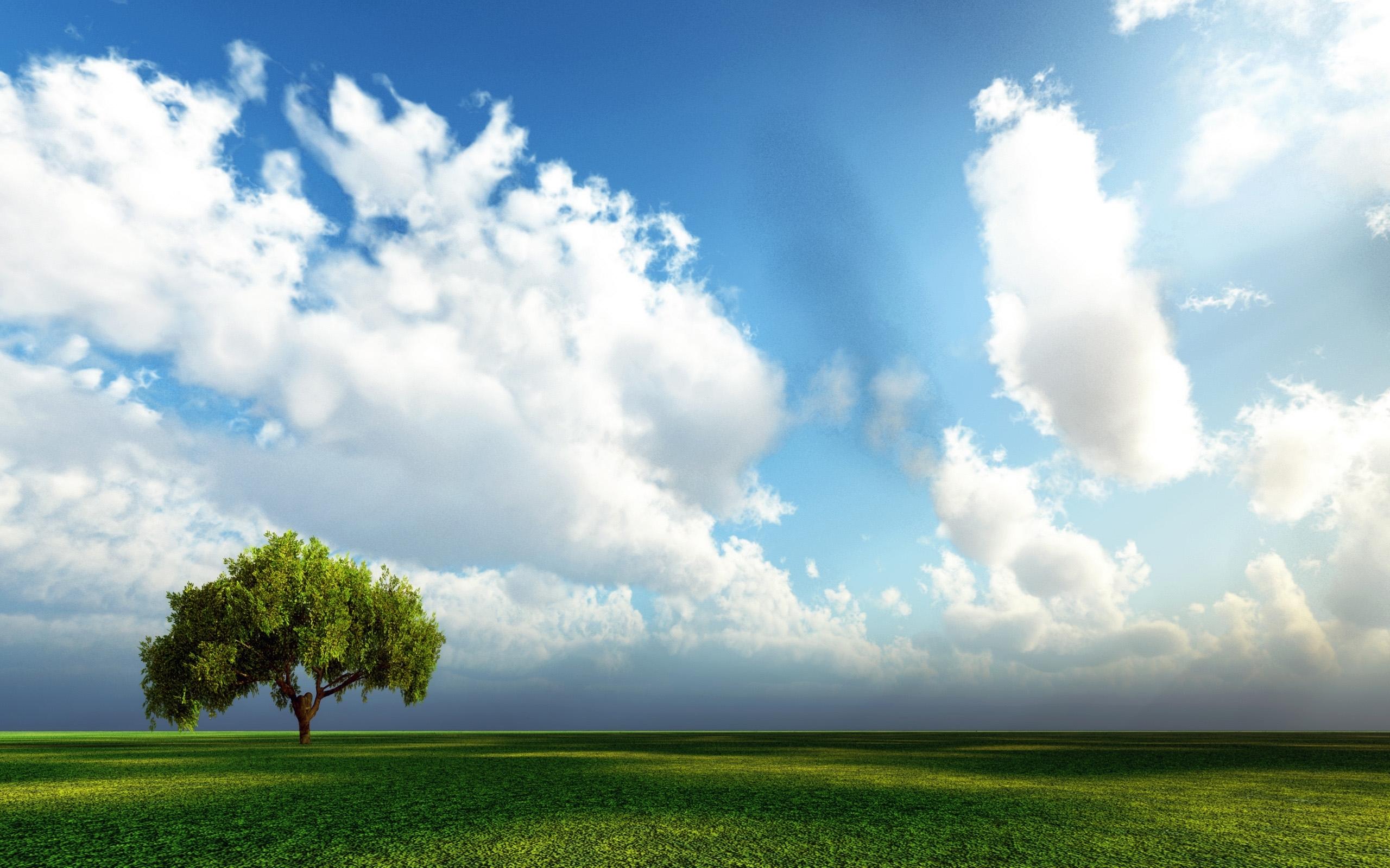 4605 скачать обои Пейзаж, Деревья, Небо - заставки и картинки бесплатно