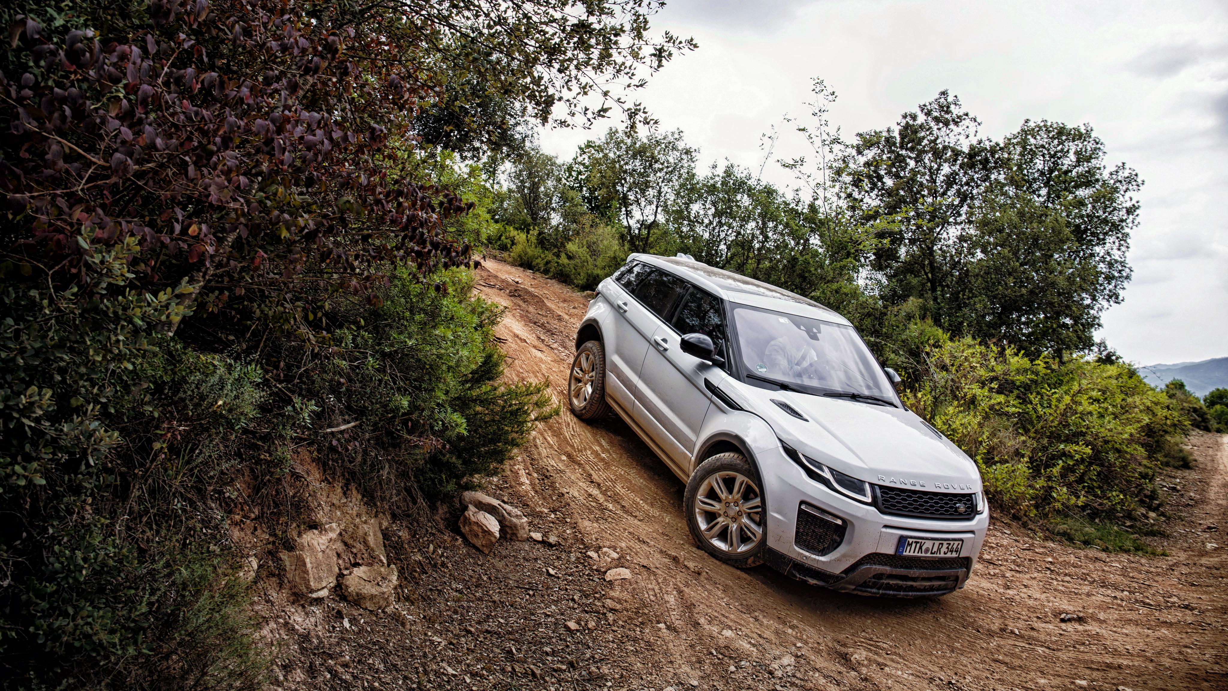65006 скачать обои Тачки (Cars), Ленд Ровер (Land Rover), Рендж Ровер (Range Rover), Evoque, Серебристый, Спуск - заставки и картинки бесплатно