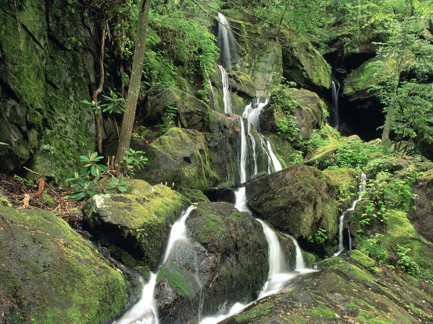 34311 скачать обои Пейзаж, Водопады - заставки и картинки бесплатно