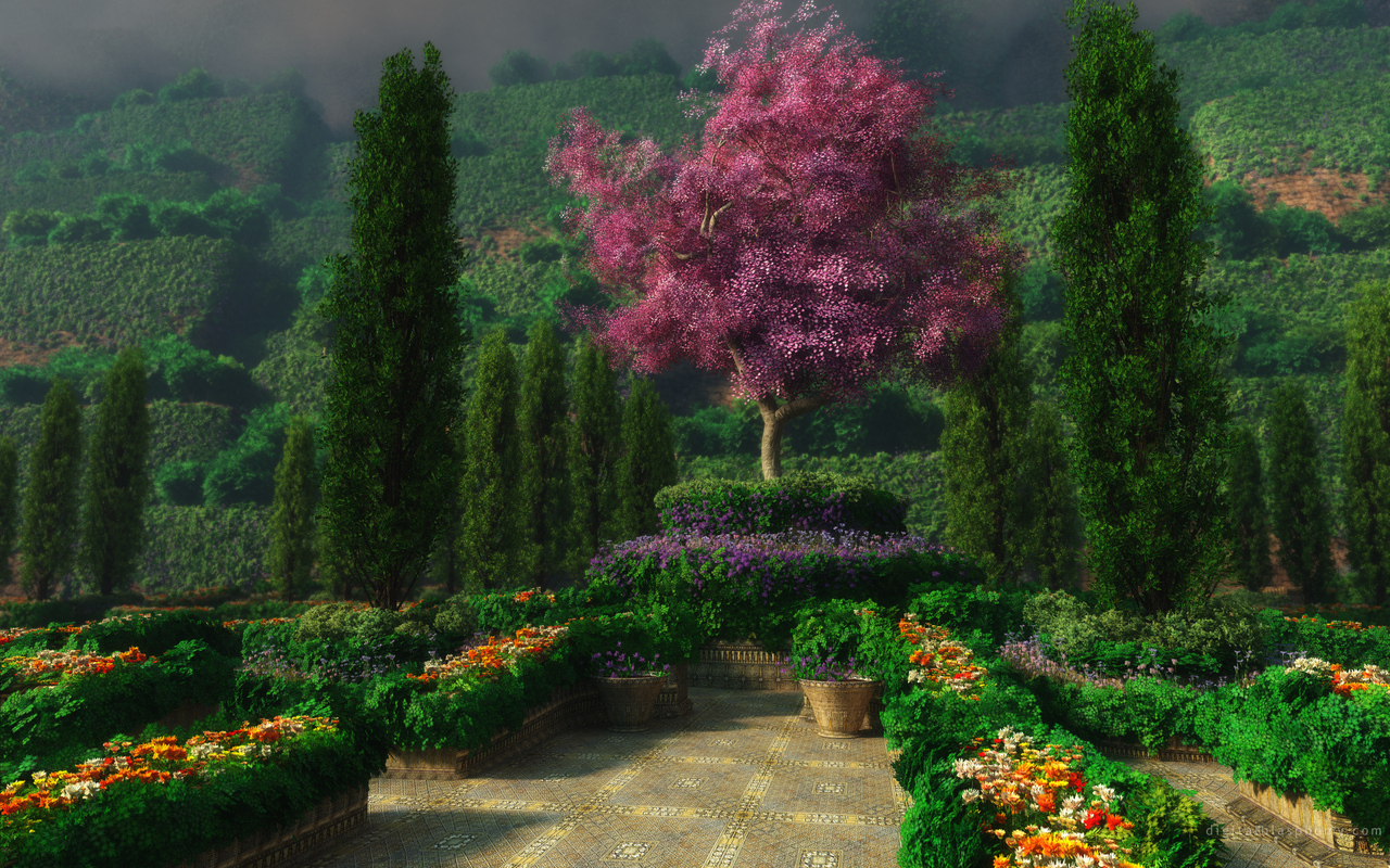 12801 download wallpaper Plants, Landscape, Trees screensavers and pictures for free