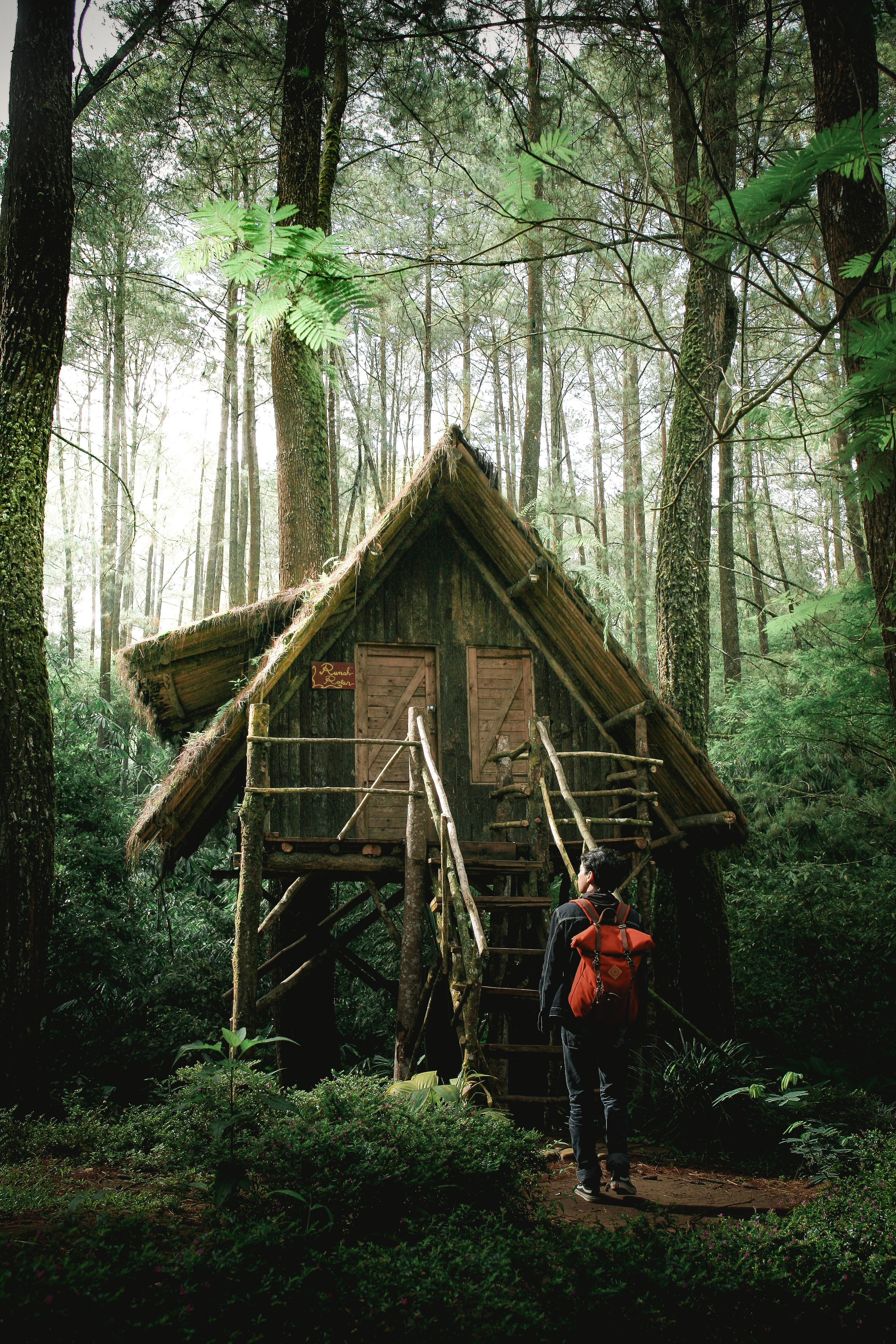 63944 Screensavers and Wallpapers Small House for phone. Download Nature, Privacy, Seclusion, Forest, Small House, Lodge, Guy, Harmony pictures for free