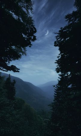 65739 скачать обои Природа, Туман, Деревья, Луна, Сумерки, Горы, Пейзаж - заставки и картинки бесплатно