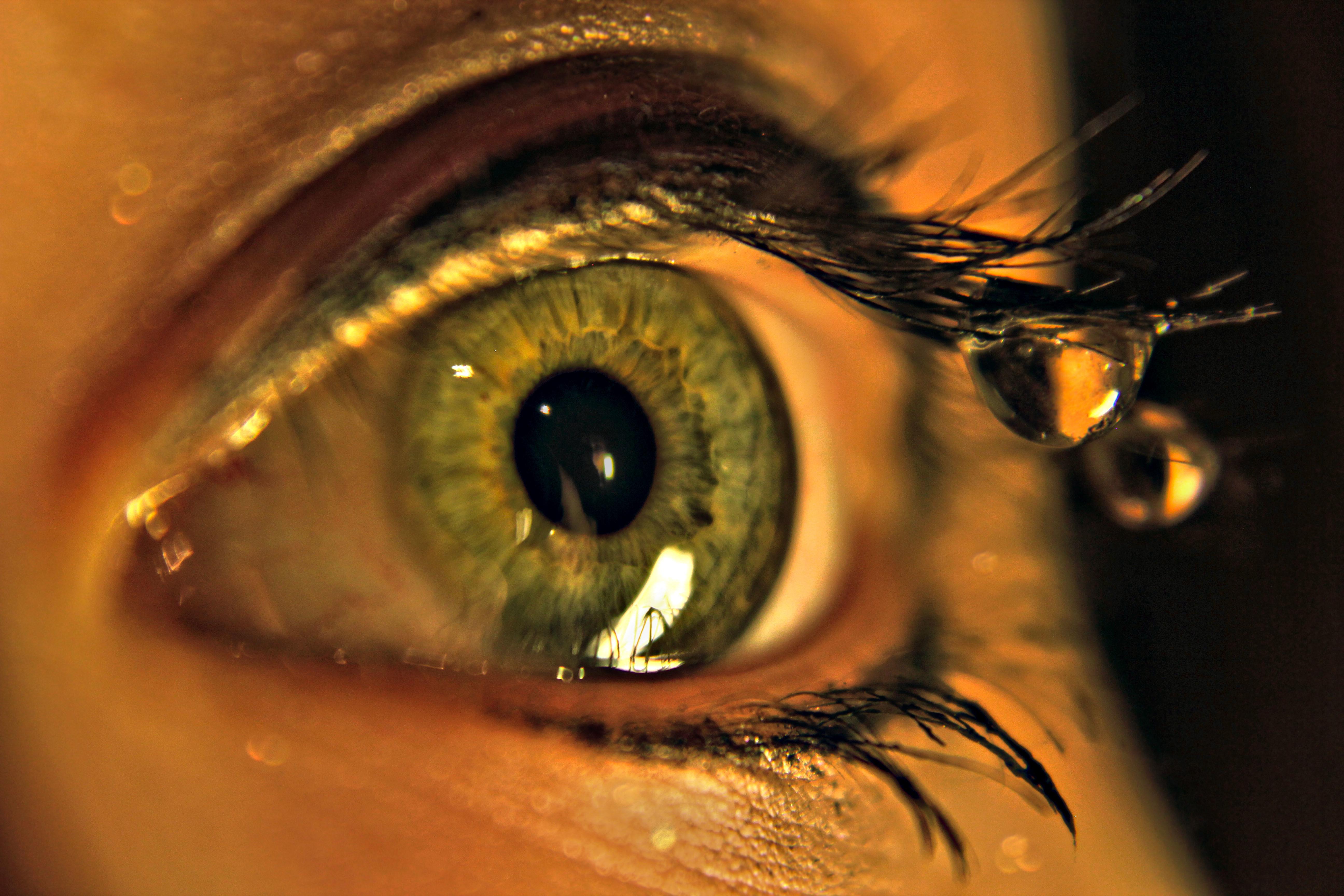 144127 download wallpaper Macro, Eye, Drops, Eyelashes, Eyelash screensavers and pictures for free