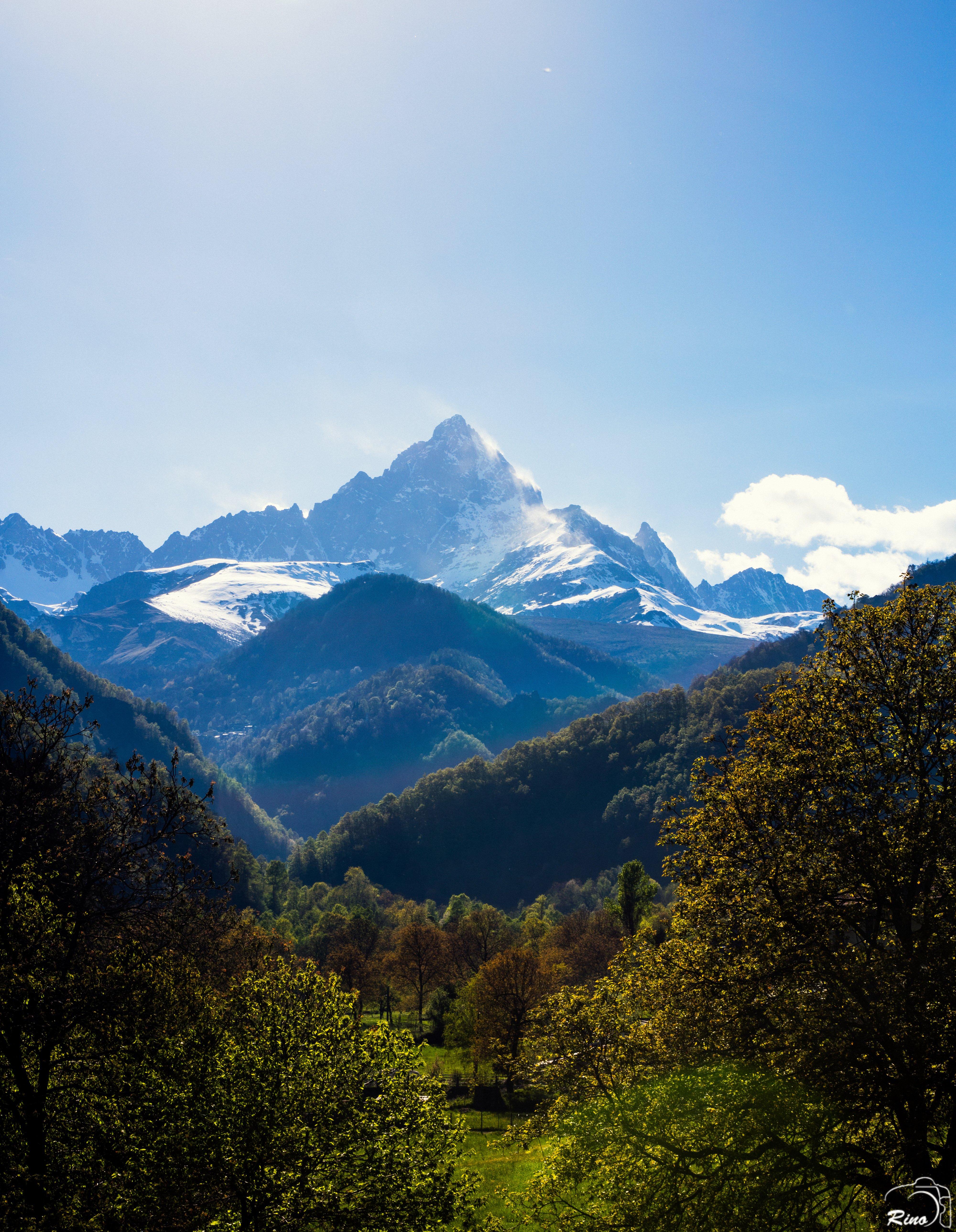 131882壁紙のダウンロード自然, 森林, 森, 木, バーテックス, ページのトップへ, 山脈, 風景-スクリーンセーバーと写真を無料で