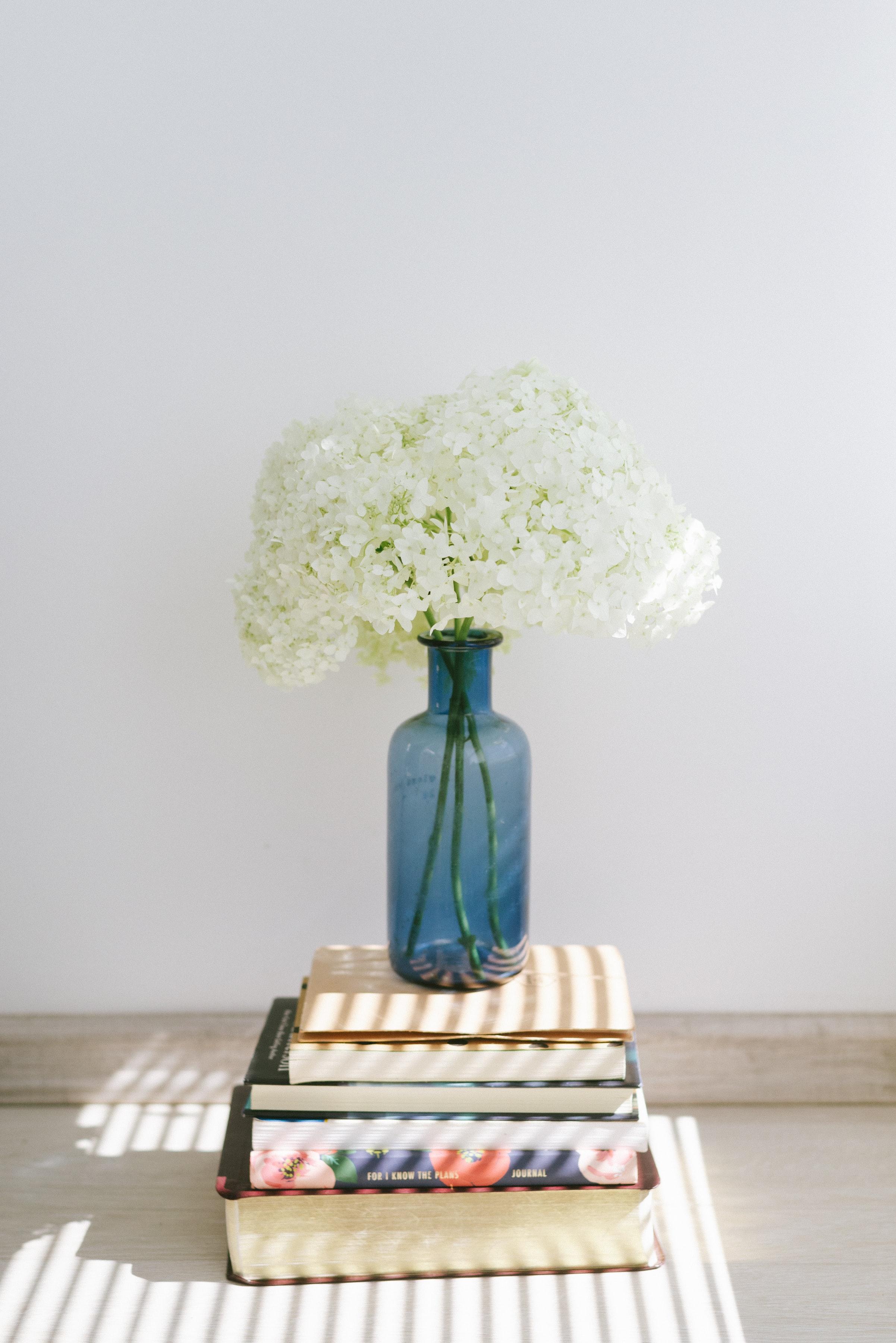 132263 скачать обои Цветы, Гортензия, Ваза, Книги - заставки и картинки бесплатно