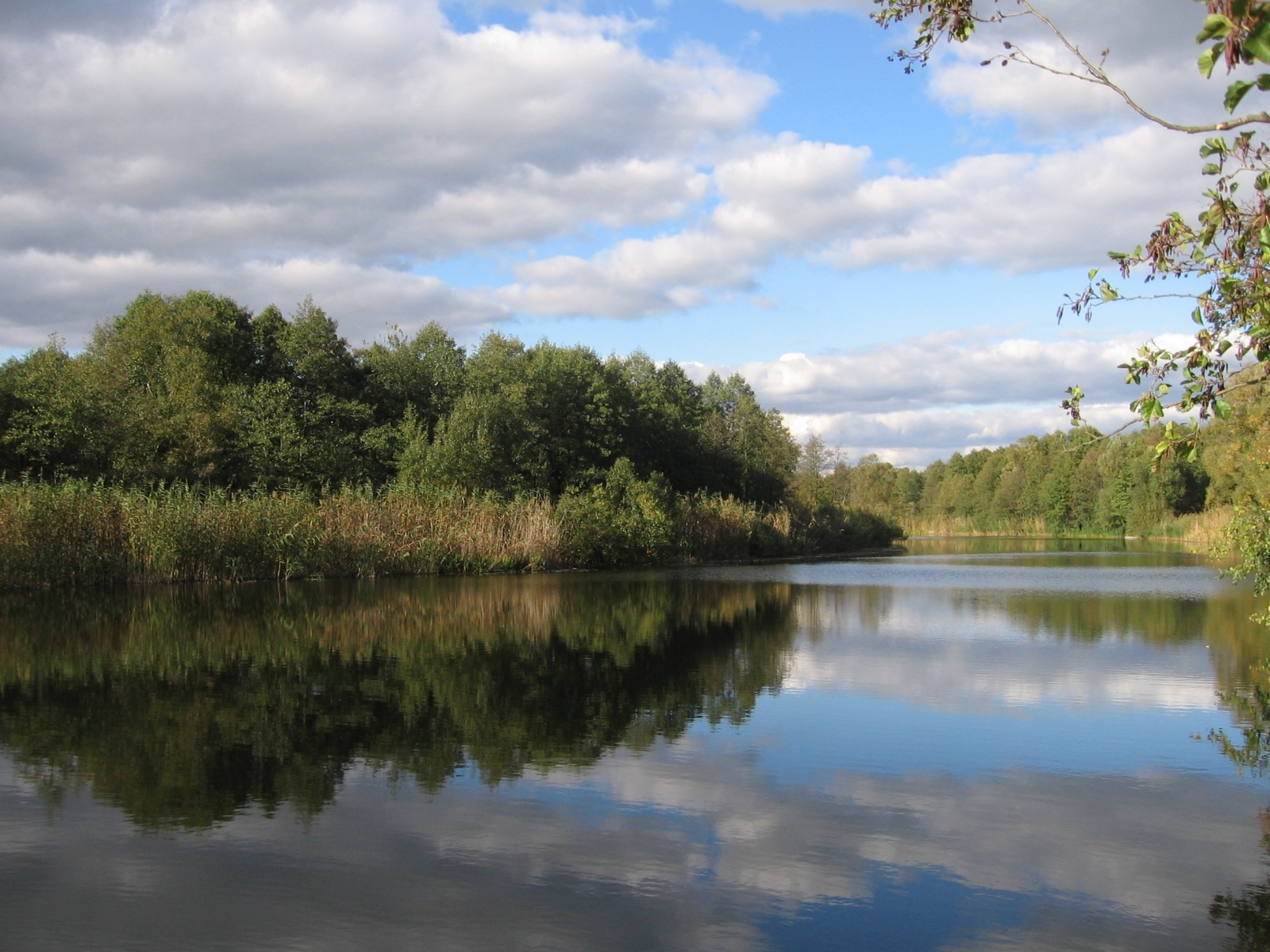 2418 скачать обои Пейзаж, Вода, Река, Деревья, Небо - заставки и картинки бесплатно