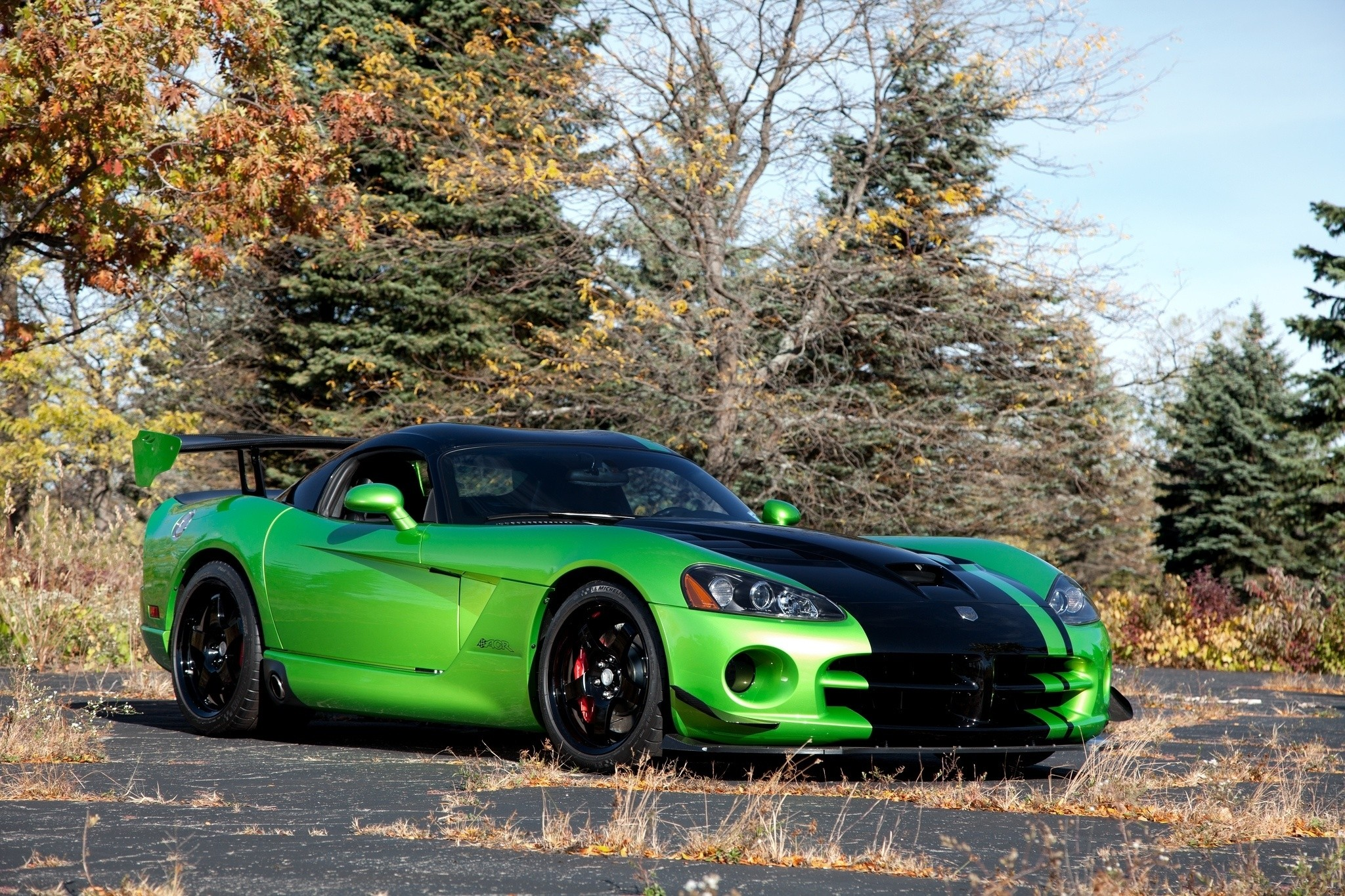 98049 Screensavers and Wallpapers Auto for phone. Download Auto, Sky, Cars, Dodge, Viper, Overpass, Acr Snakeskin Edition, Trestle pictures for free