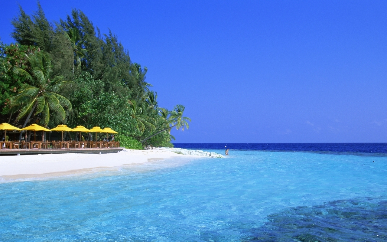 2957壁紙のダウンロード風景, 水, 海, ビーチ, パームス-スクリーンセーバーと写真を無料で
