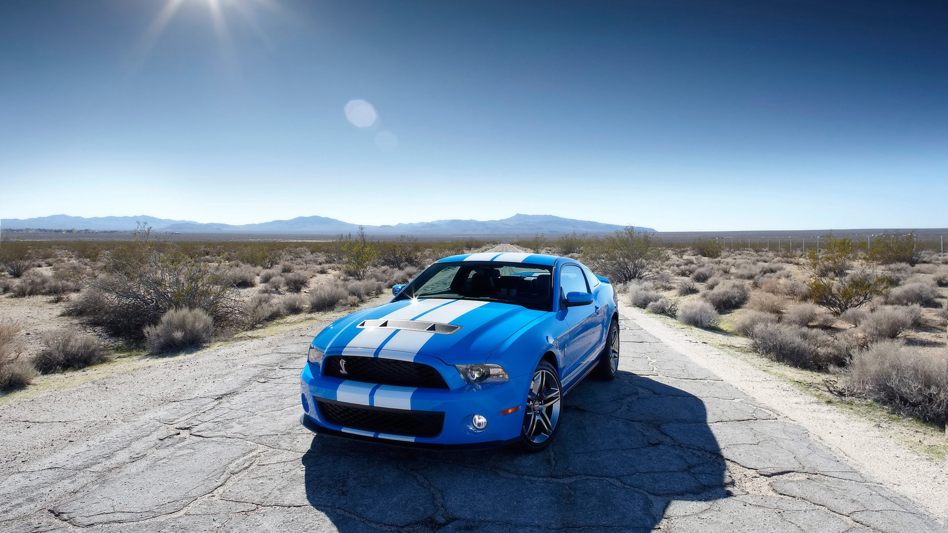 20447 скачать обои Транспорт, Машины, Дороги, Мустанг (Mustang) - заставки и картинки бесплатно