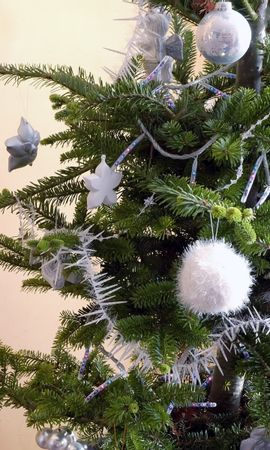 1332 download wallpaper Holidays, Trees, New Year, Fir-Trees screensavers and pictures for free