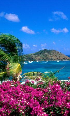 30026 скачать обои Пейзаж, Море, Пальмы - заставки и картинки бесплатно