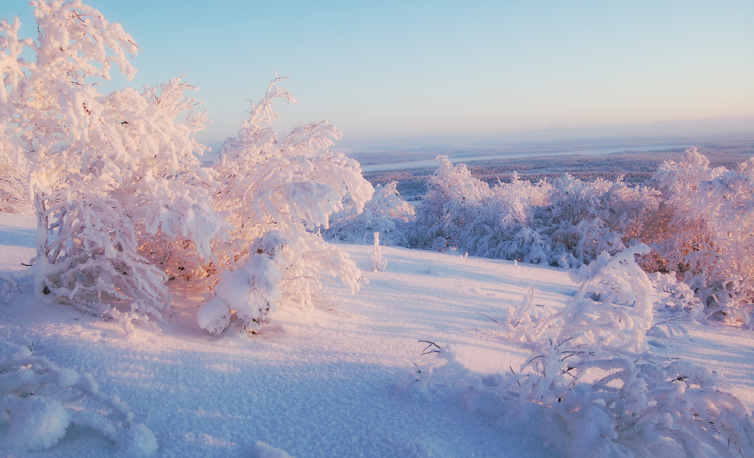 43019 download wallpaper Landscape, Winter, Nature screensavers and pictures for free