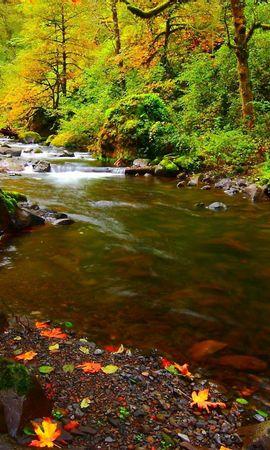 152390 Заставки и Обои Река на телефон. Скачать Природа, Река, Камни, Листья, Осень картинки бесплатно