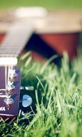 23726 descargar fondo de pantalla Música, Hierba, Instrumentos, Guitarras: protectores de pantalla e imágenes gratis