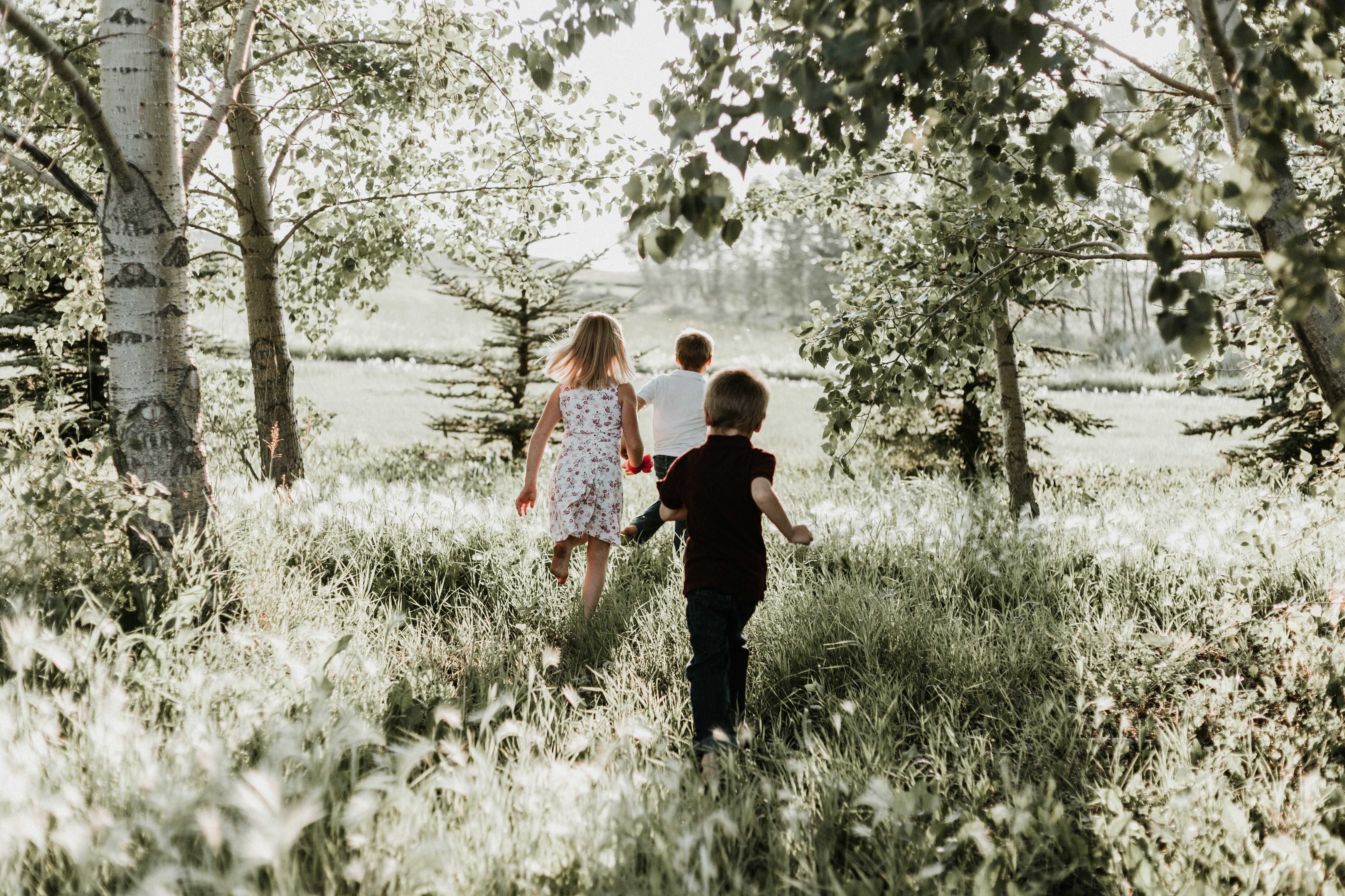 94193 download wallpaper Grass, Children, Miscellanea, Miscellaneous, Stroll, Sunlight screensavers and pictures for free