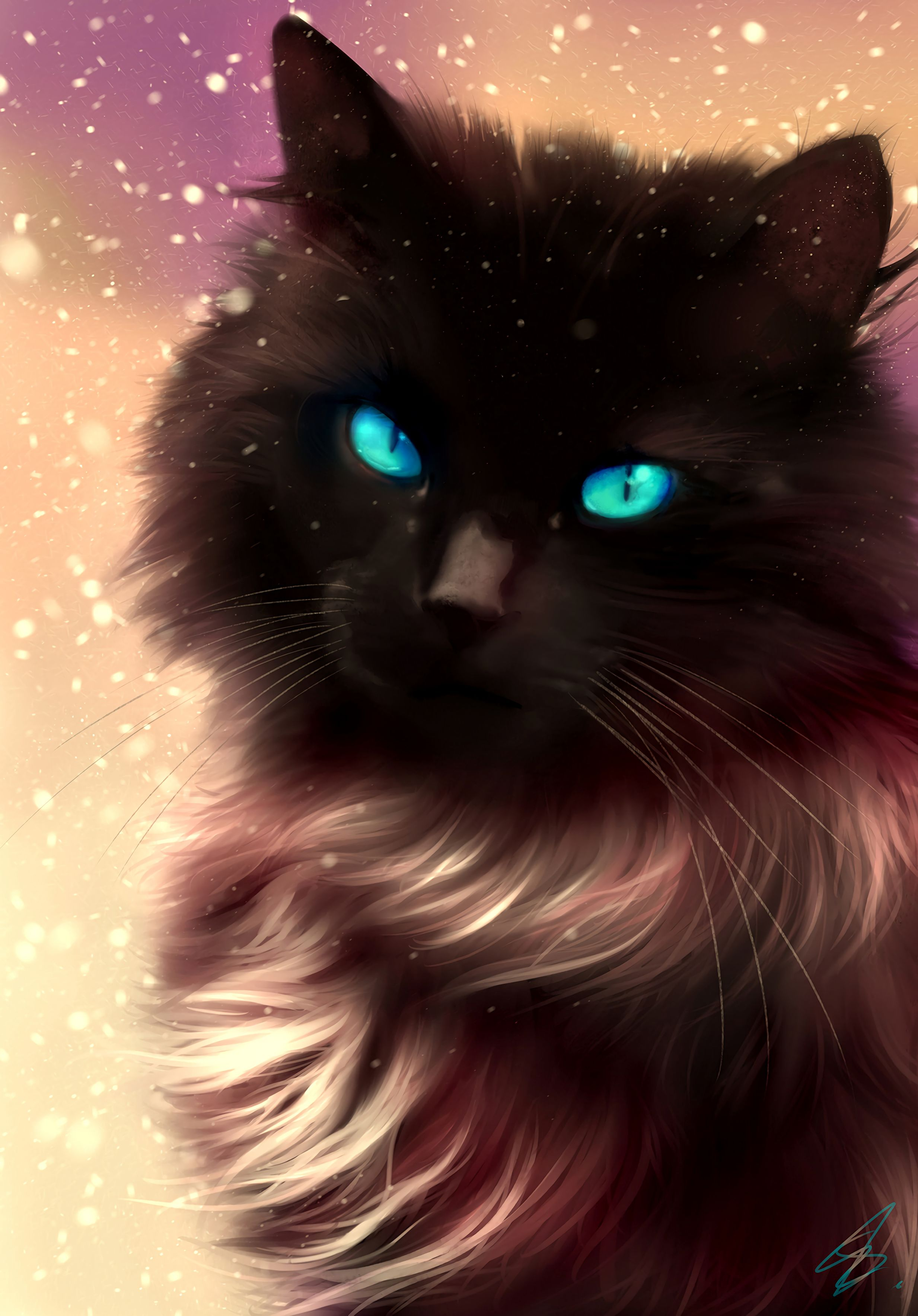153286 Screensavers and Wallpapers Fluffy for phone. Download Art, Cat, Fluffy, Blue Eyed, Blue-Eyed pictures for free