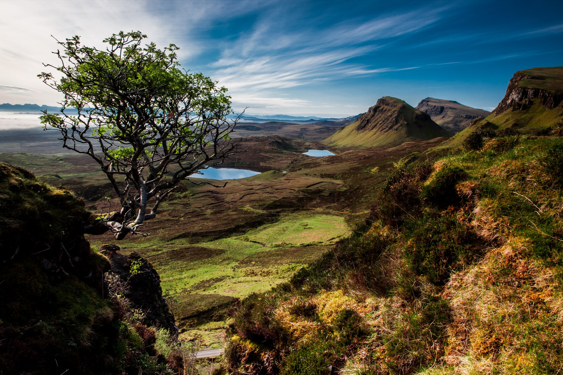 78503 free wallpaper 1080x2400 for phone, download images Nature, Trees, Mountains, Lake, Scotland 1080x2400 for mobile