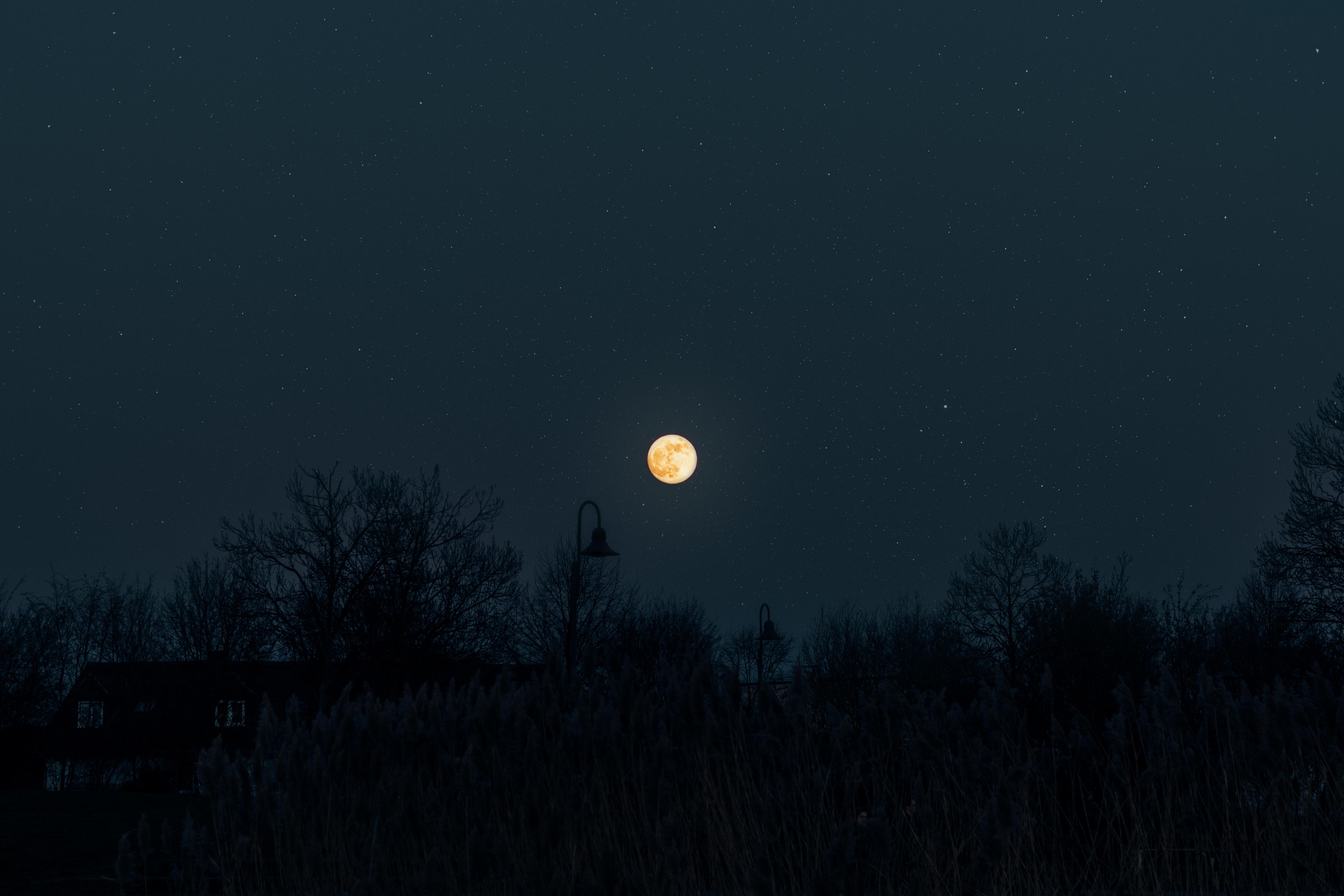 127206 Protetores de tela e papéis de parede Lua em seu telefone. Baixe Lua, Noite, Escuro, Silhuetas, Céu Estrelado, Trevas, Escuridão, Lua Cheia fotos gratuitamente