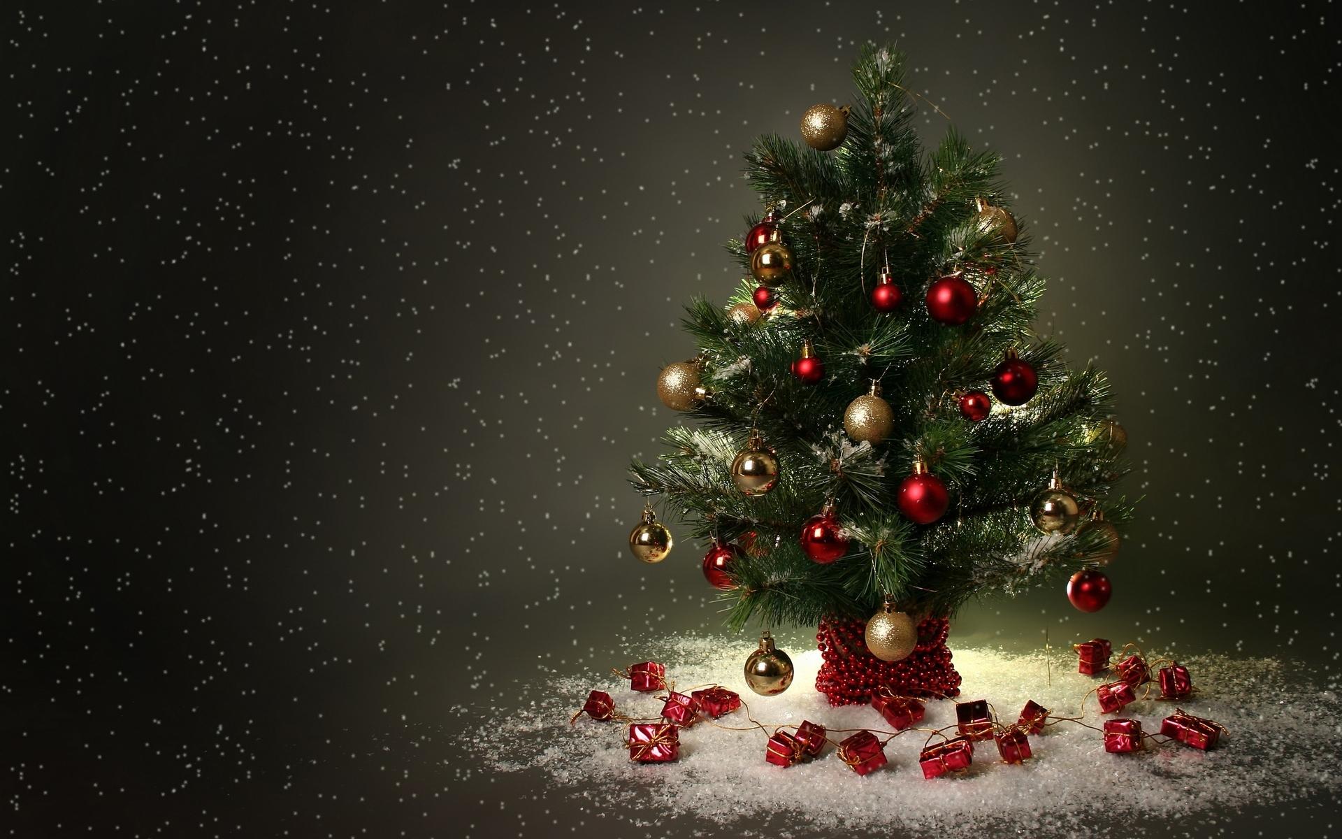 15885 télécharger le fond d'écran Fêtes, Nouvelle Année, Sapins, Noël - économiseurs d'écran et images gratuitement