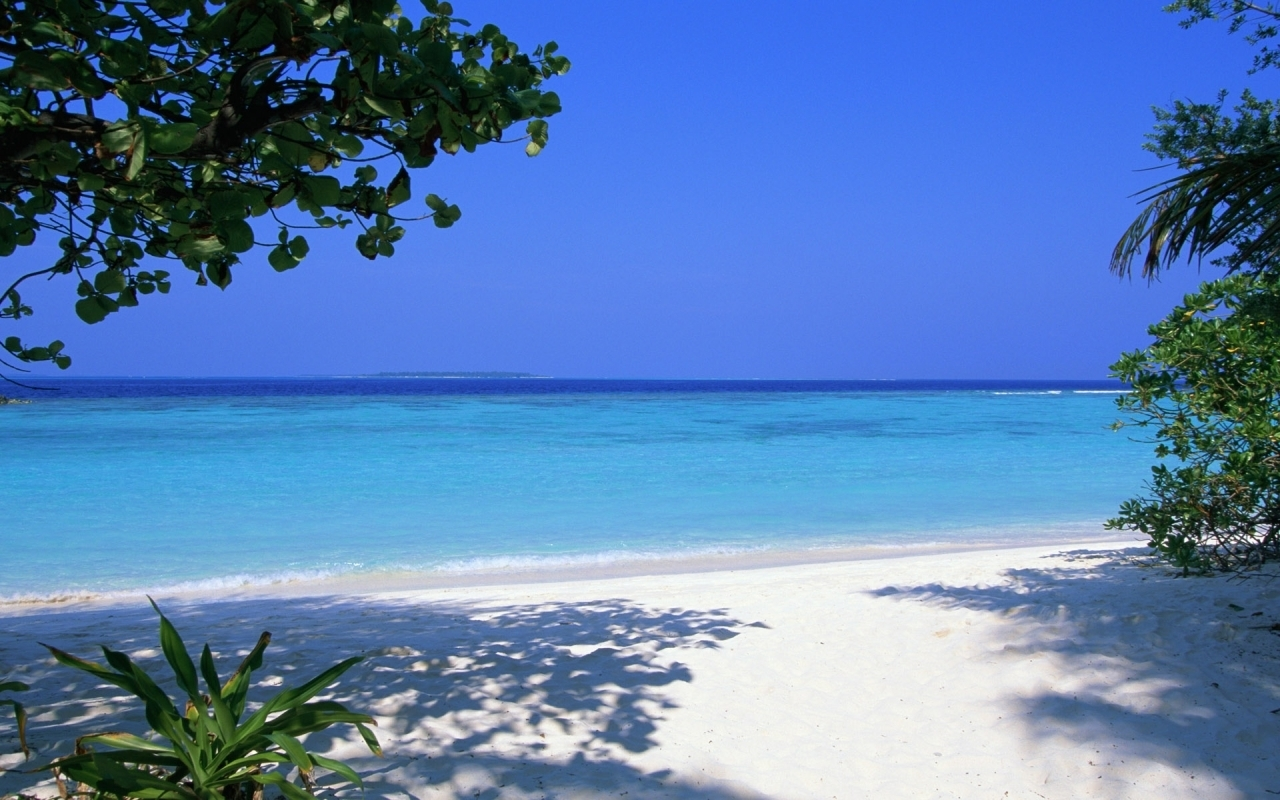 1851 download wallpaper Landscape, Water, Sea, Beach screensavers and pictures for free