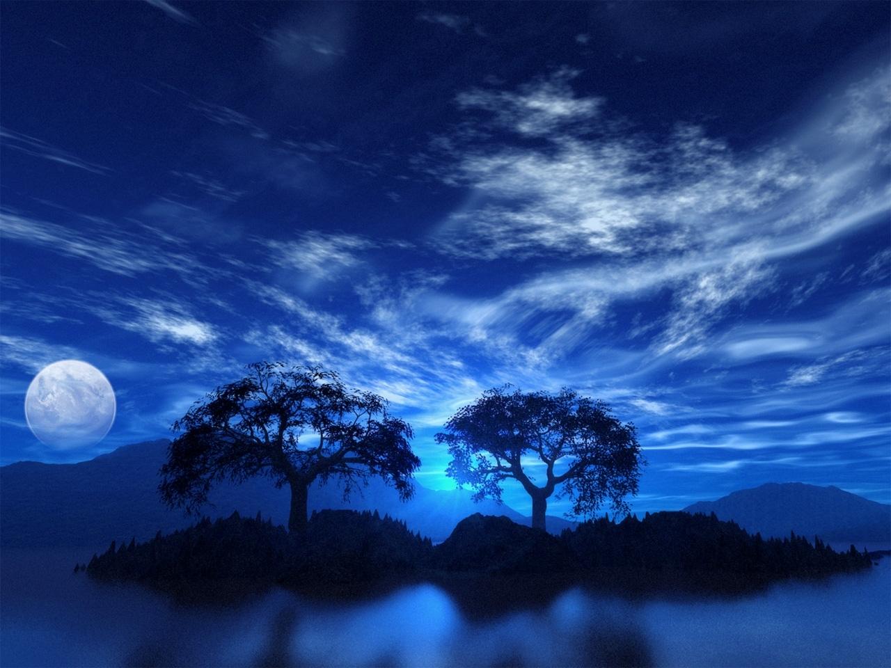 3084 скачать обои Пейзаж, Деревья, Ночь - заставки и картинки бесплатно