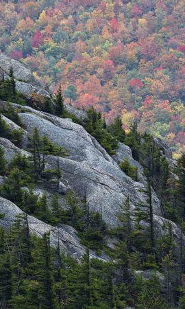 28072 скачать обои Пейзаж, Деревья, Горы - заставки и картинки бесплатно
