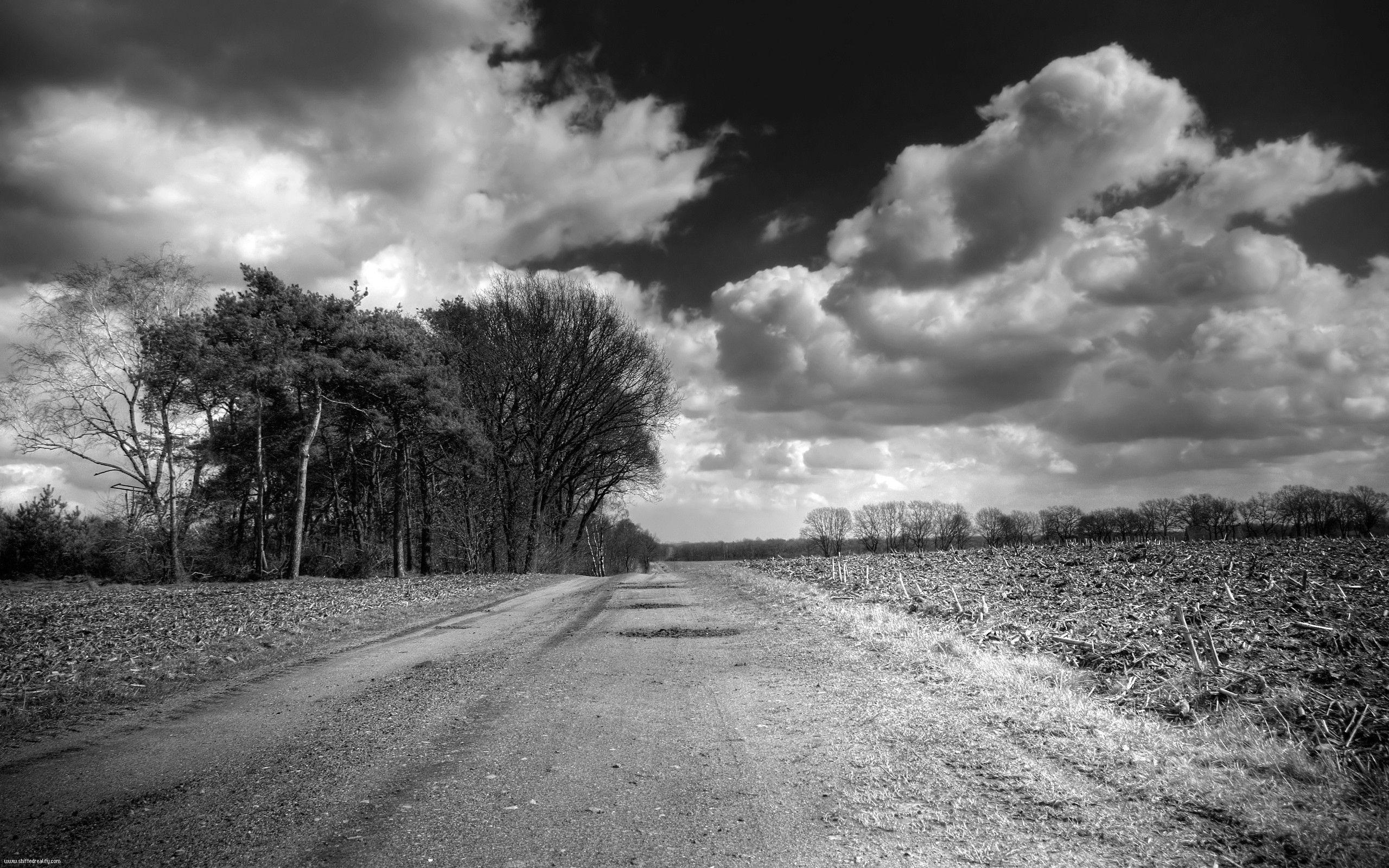 67397 baixar papel de parede Natureza, Estrada, Caminho, Campo, País, Preto E Branco, Árvores, Nuvens, Volumétrico, Volumoso - protetores de tela e imagens gratuitamente