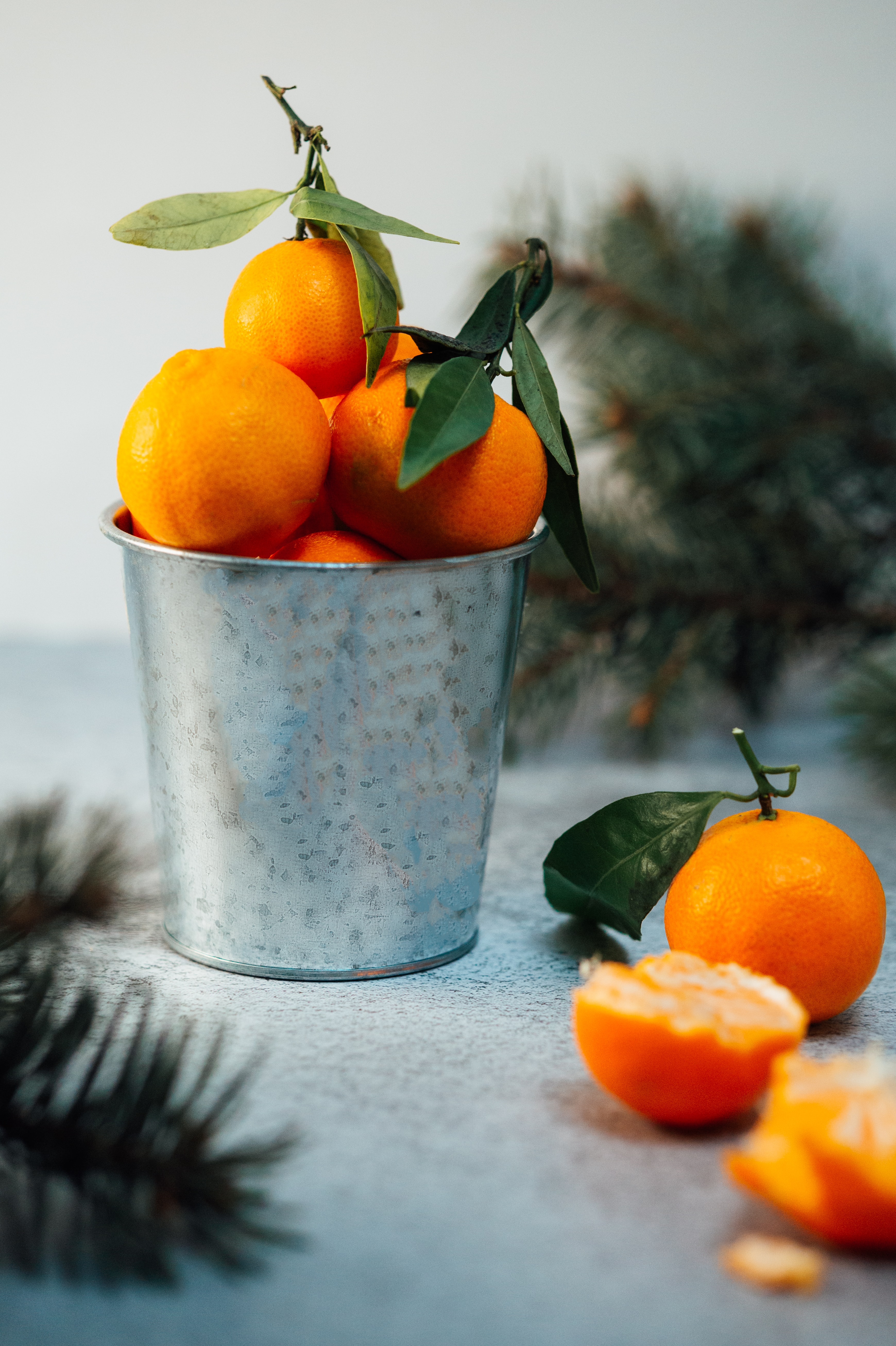 68310 Screensavers and Wallpapers Fruits for phone. Download Food, Citrus, Bucket, Fruits, Tangerines pictures for free