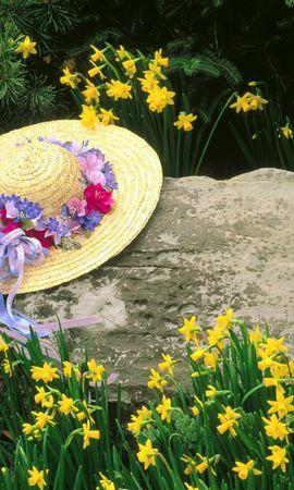 10658 скачать обои Растения, Цветы - заставки и картинки бесплатно
