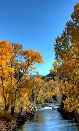 1721 download wallpaper Landscape, Rivers, Trees, Autumn screensavers and pictures for free