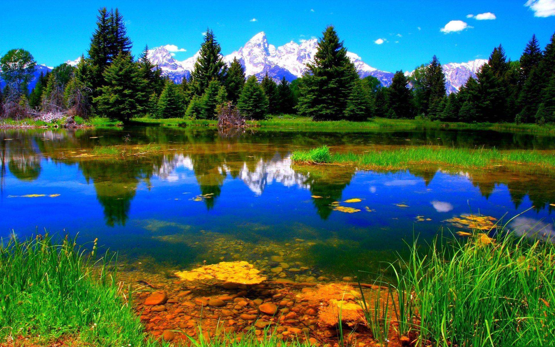 132857 скачать обои Пейзаж, Природа, Озеро, Растительность, Зеленый - заставки и картинки бесплатно