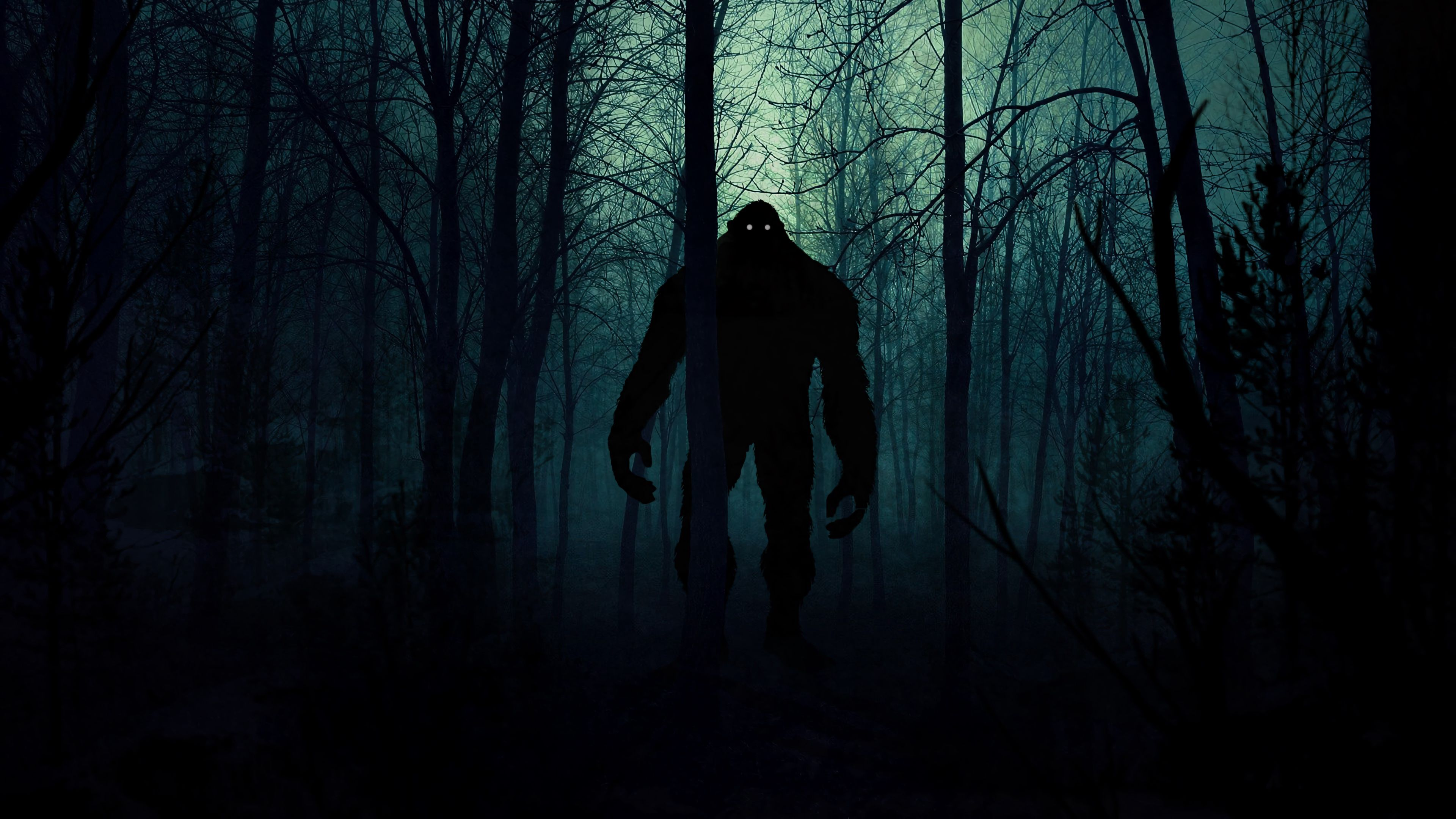 124382 download wallpaper Night, Dark, Art, Silhouette, Forest, Monster screensavers and pictures for free