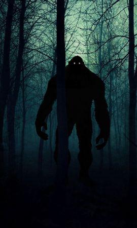 Téléchargez le fond d'écran gratuit 124382: Sombre, Monstre, Silhouette, Forêt, Nuit, Art fond d'écran pour téléphone mobile