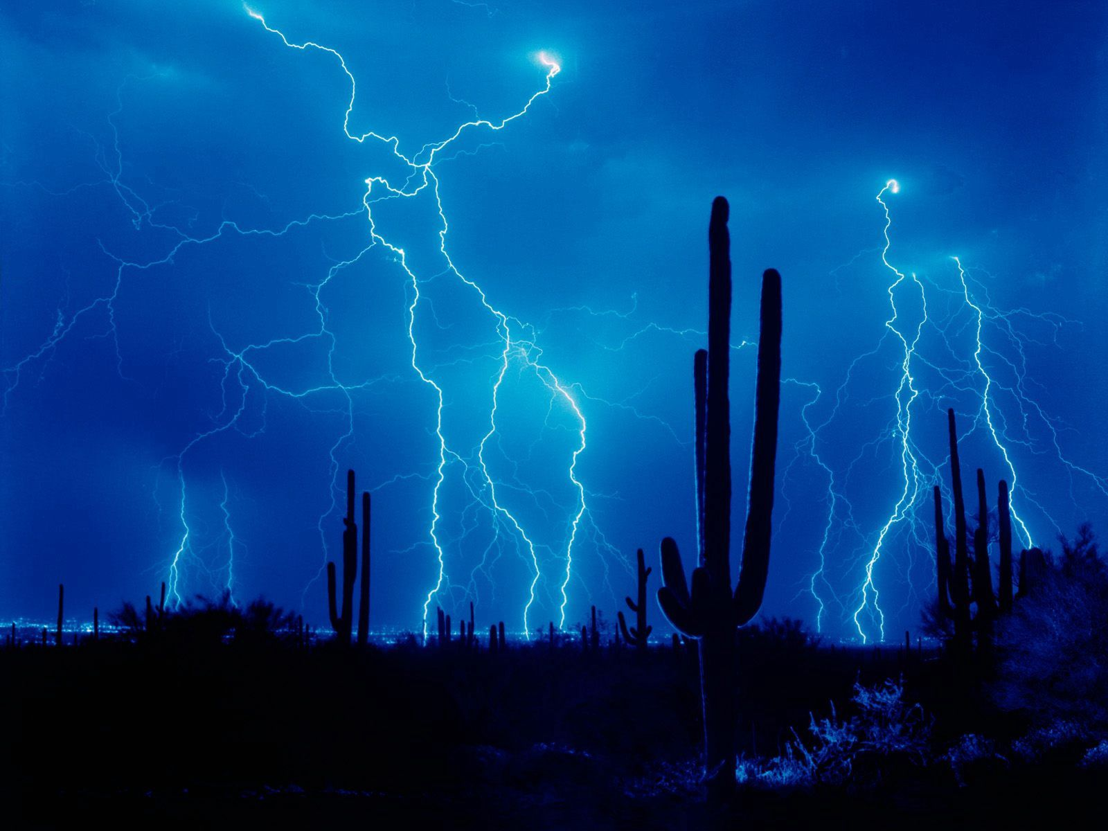 54436 download wallpaper Nature, Cactuses, Sky, Lightning, Desert, Element, Outlines, Storm, Thunderstorm screensavers and pictures for free