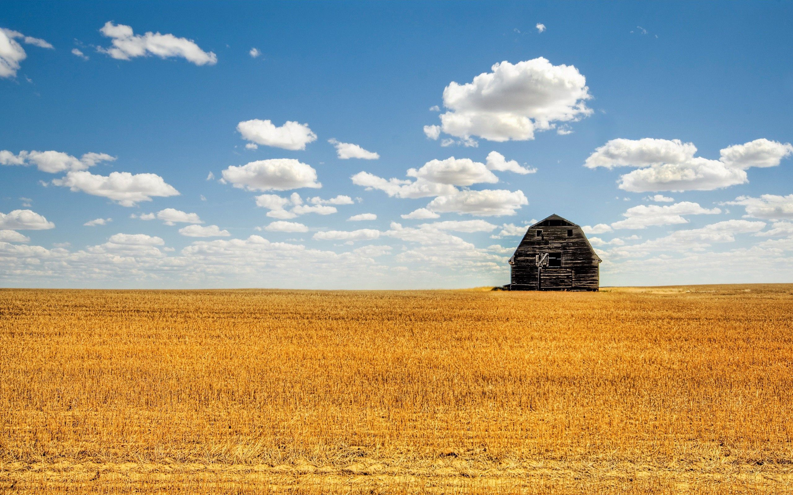 116797 Screensavers and Wallpapers Agriculture for phone. Download Nature, Clouds, Field, Culture, Barn, Shed, Hay, Agriculture pictures for free