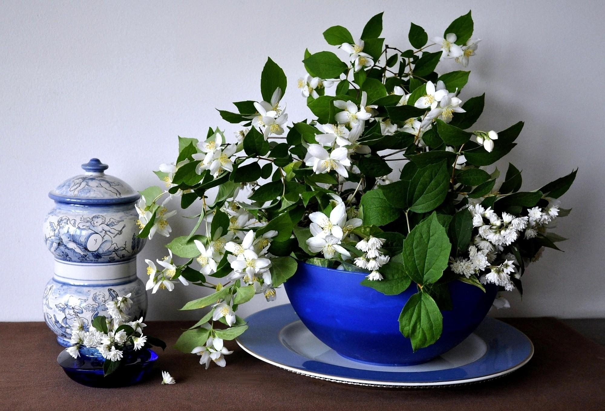 118664 Screensavers and Wallpapers Bouquet for phone. Download Flowers, Bouquet, Bowl, Spring, Jasmine, Porcelain pictures for free