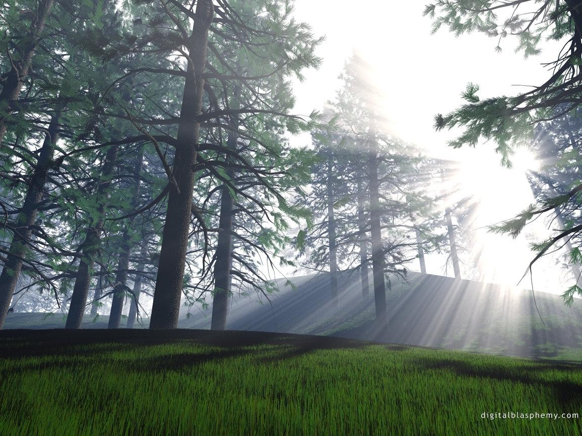 2906 скачать обои Пейзаж, Деревья, Арт, Солнце - заставки и картинки бесплатно