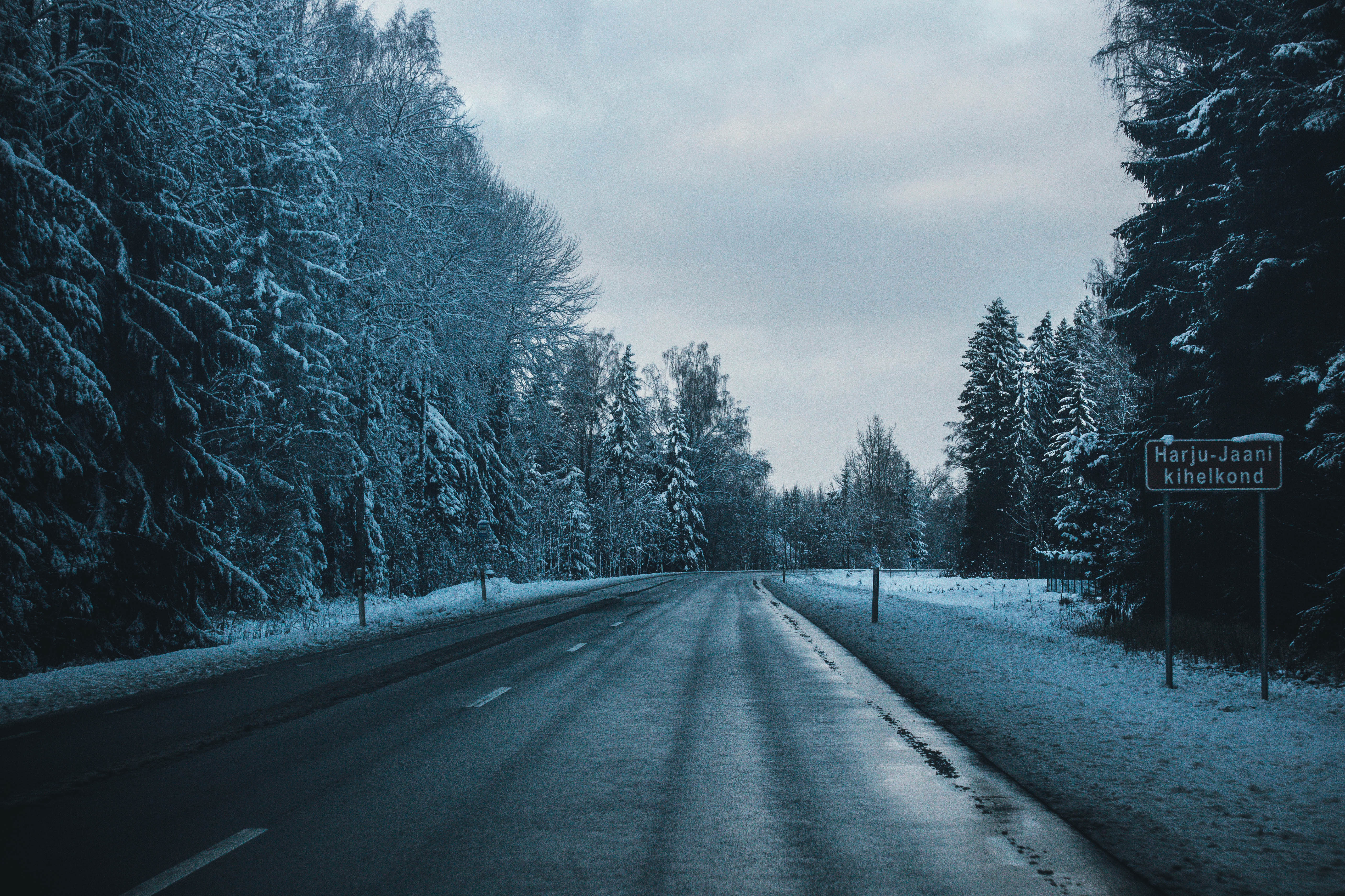 89570 Screensavers and Wallpapers Road for phone. Download Winter, Nature, Trees, Road, Turn pictures for free