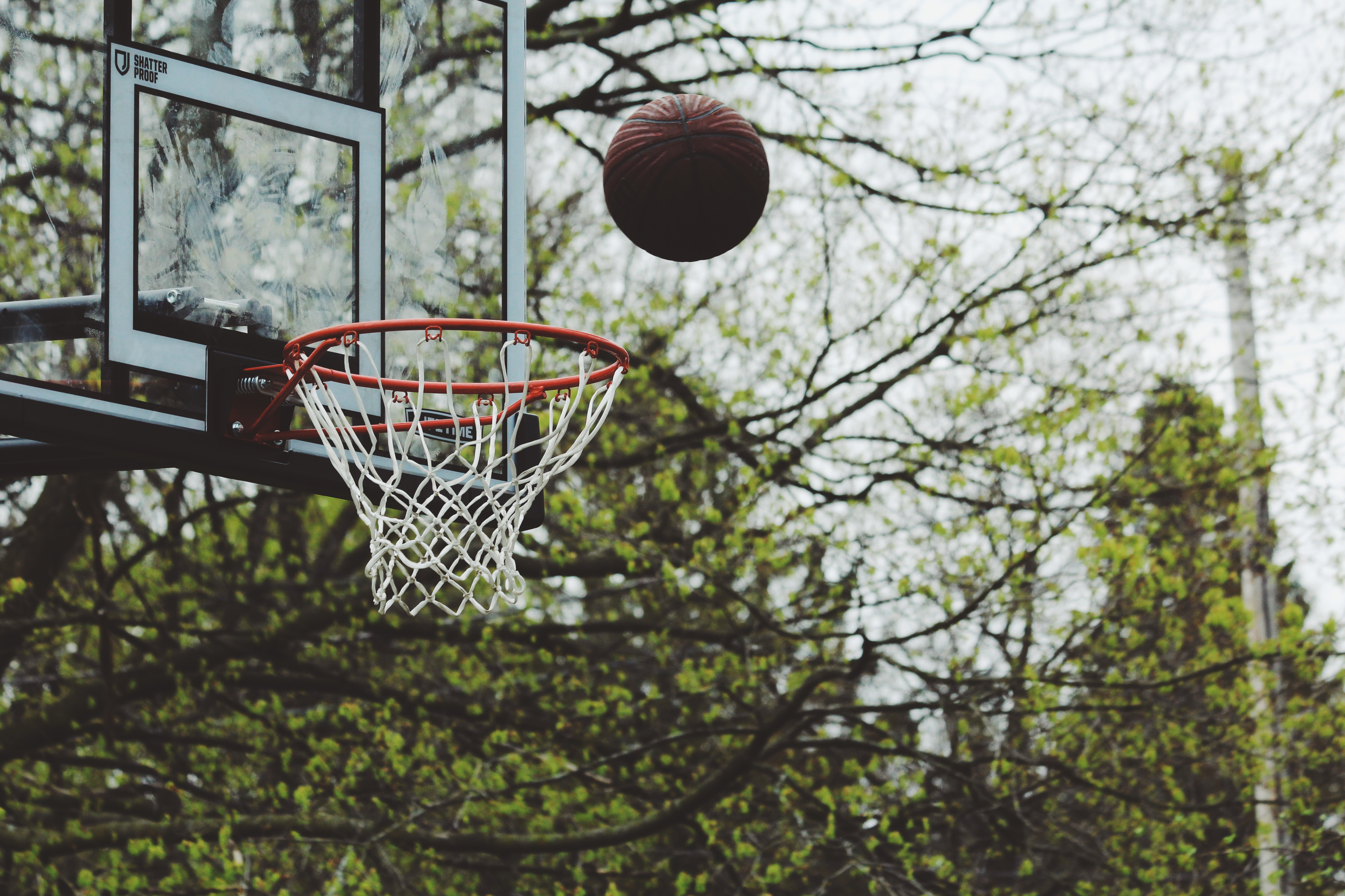 62607 download wallpaper Sports, Basketball, Ring, Ball, Throw screensavers and pictures for free
