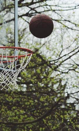 62607壁紙のダウンロードスポーツ, バスケットボール, リング, 指輪, 玉, 球, スロー, 投げる-スクリーンセーバーと写真を無料で