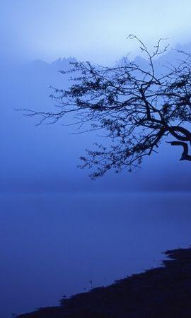 25476 скачать обои Пейзаж, Река, Деревья - заставки и картинки бесплатно
