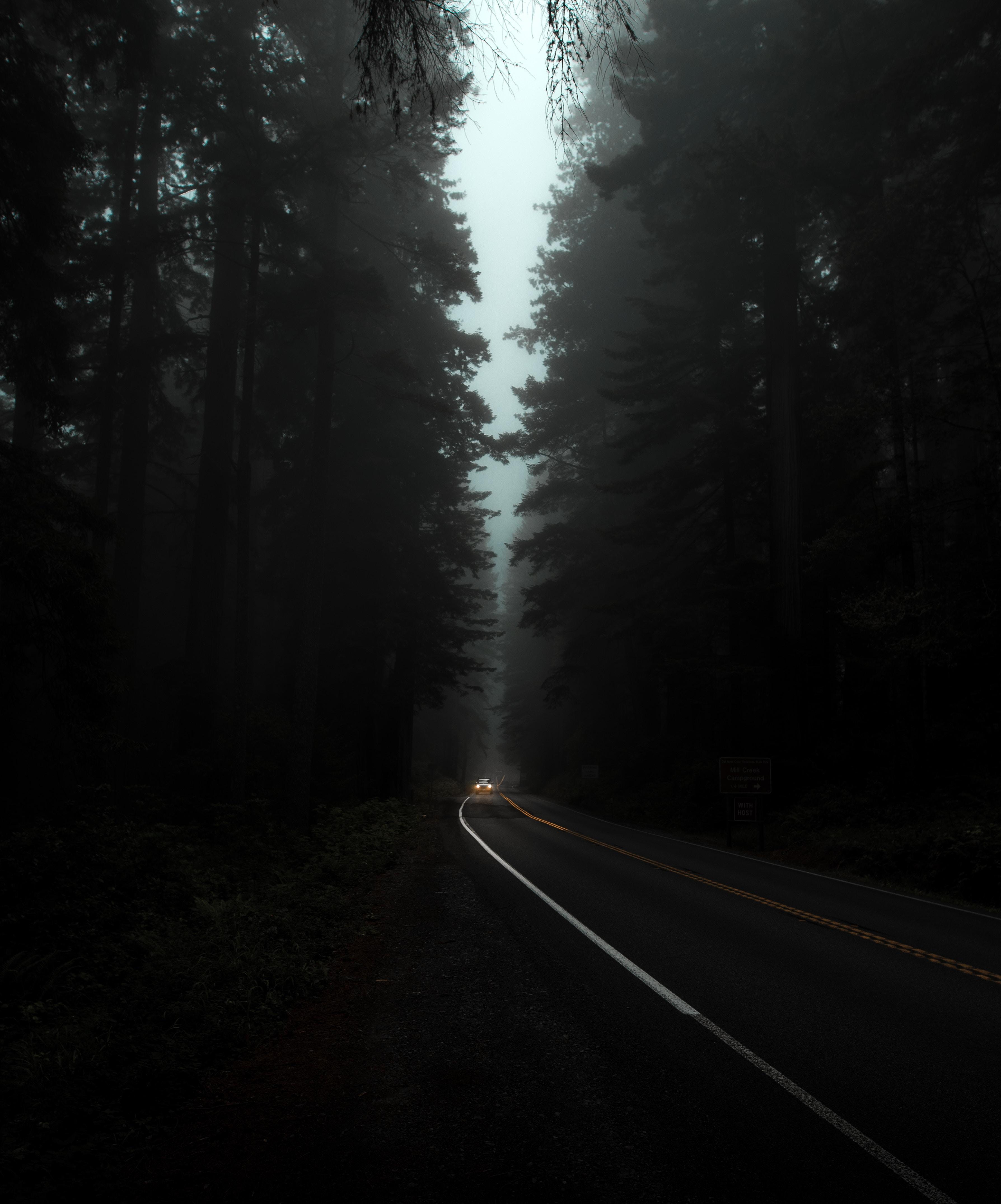 144001 Заставки и Обои Фары на телефон. Скачать Ночь, Темные, Темный, Деревья, Дорога, Туман, Фары картинки бесплатно