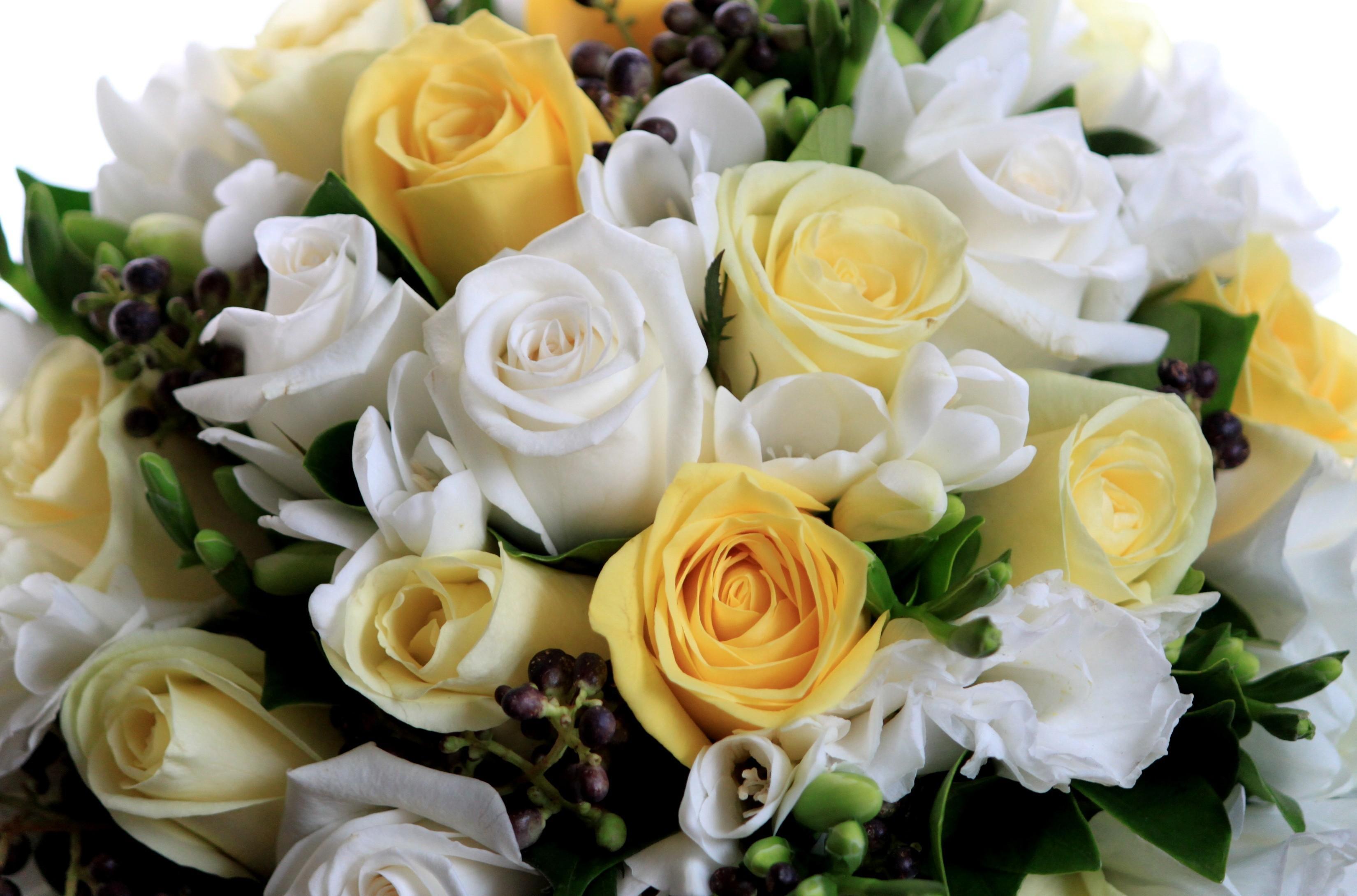 147099 скачать Желтые обои на телефон бесплатно, Розы, Цветы, Букет, Композиция, Красиво Желтые картинки и заставки на мобильный