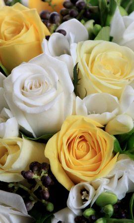 147099 baixar papel de parede Flores, Ramalhete, Buquê, Composição, Lindamente, É Lindo., Rosas - protetores de tela e imagens gratuitamente