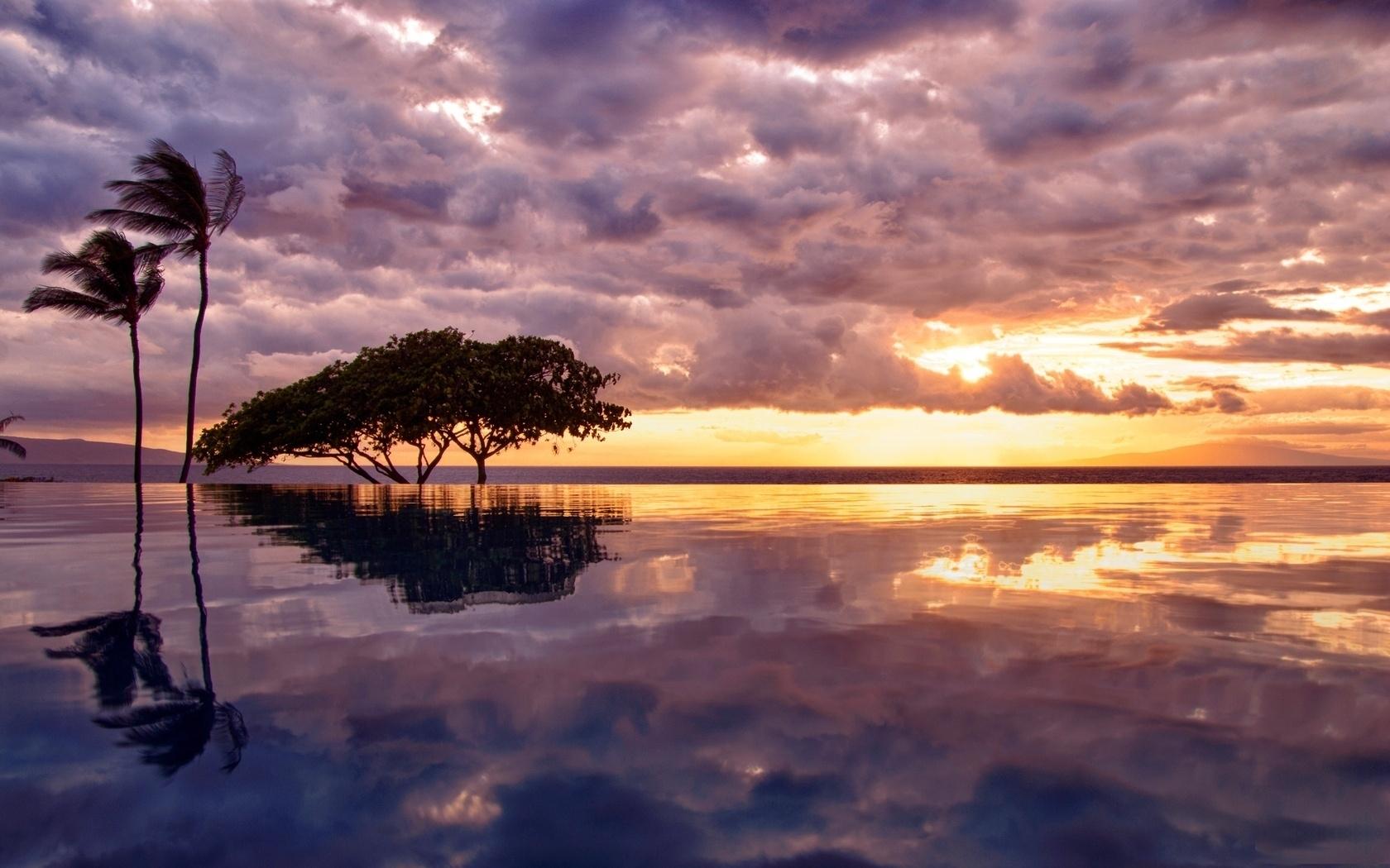 29481 скачать обои Пейзаж, Деревья, Море - заставки и картинки бесплатно