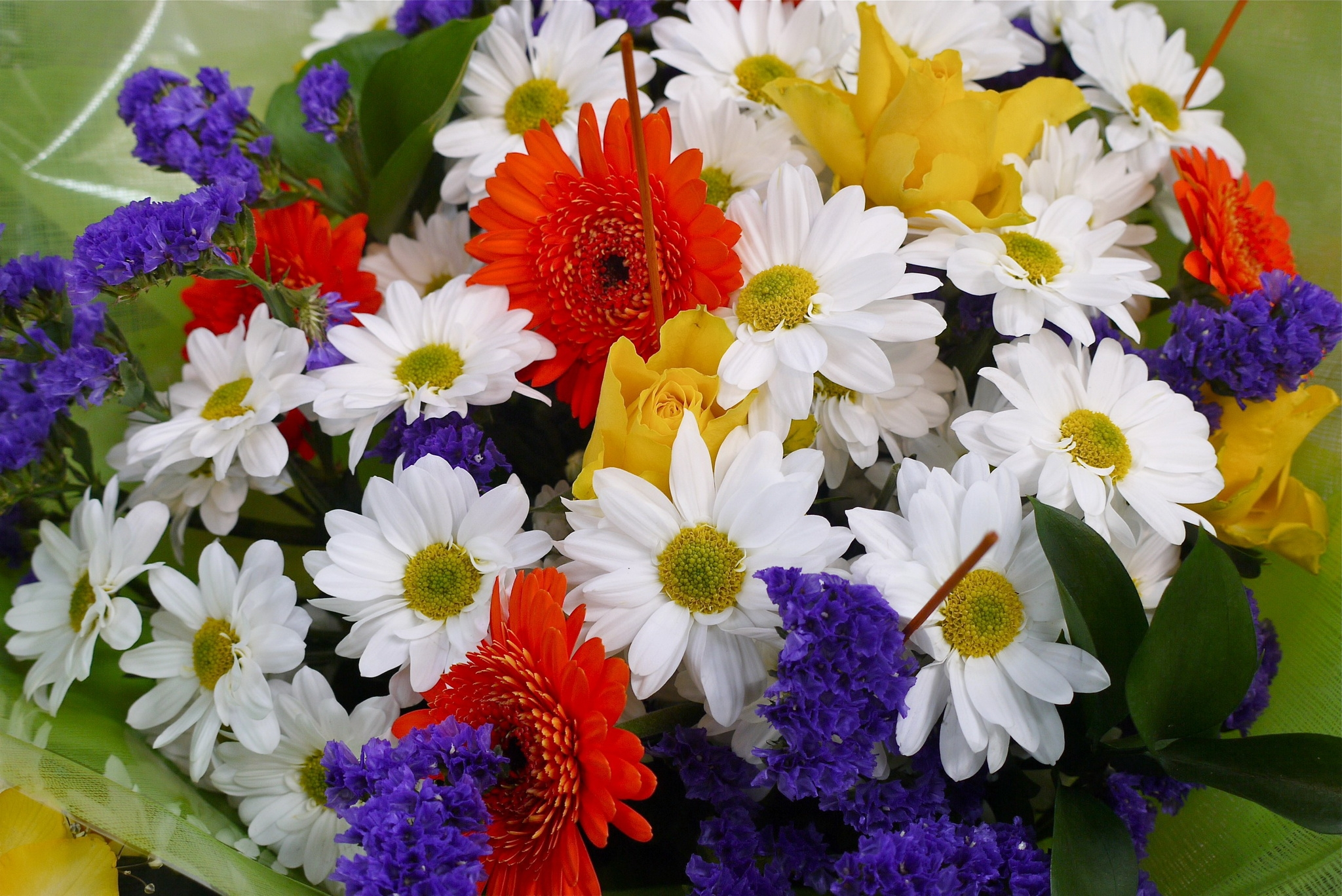 117802 Screensavers and Wallpapers Bouquet for phone. Download Flowers, Bouquet, Flora pictures for free
