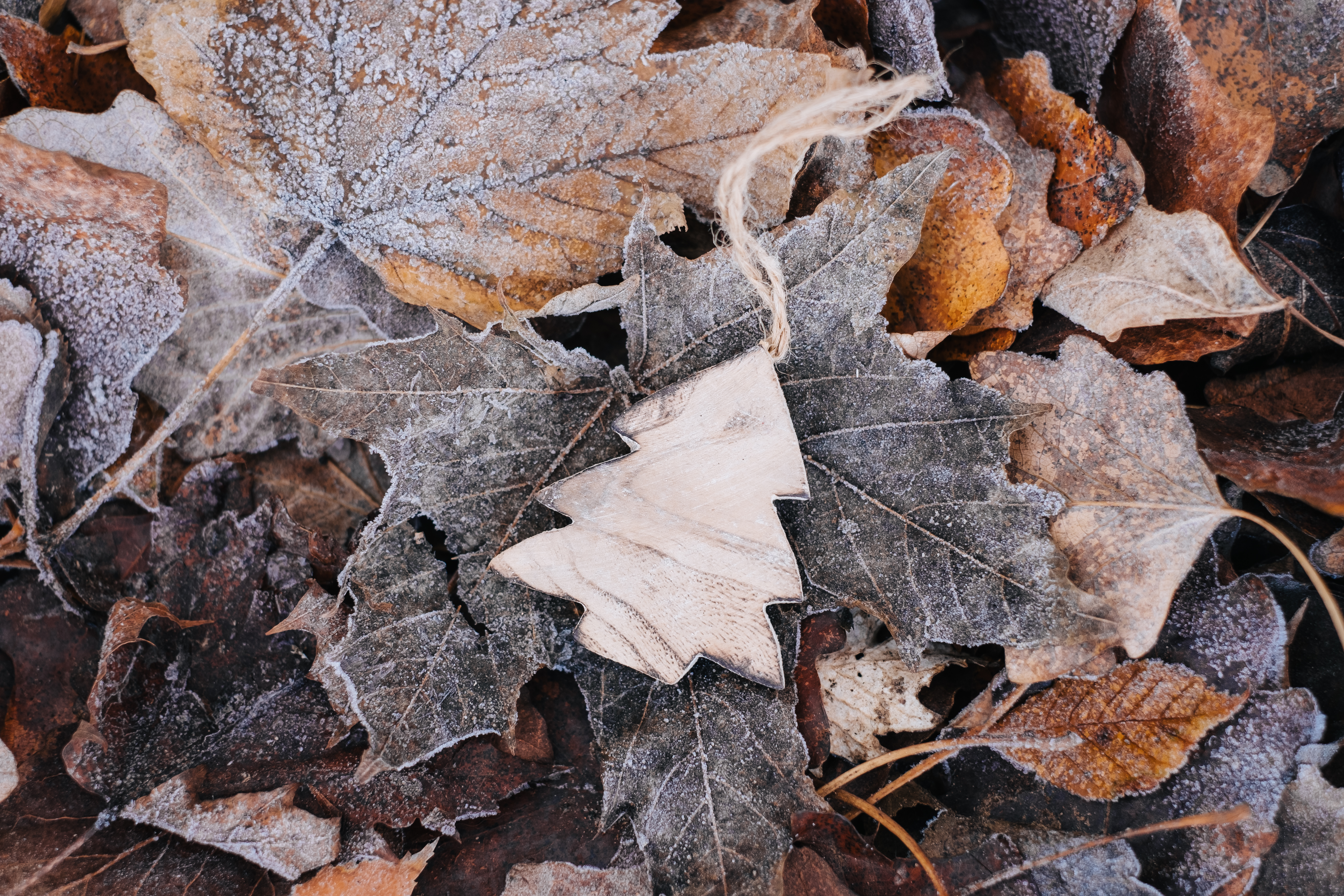 99571 Screensavers and Wallpapers Wooden for phone. Download Leaves, Miscellanea, Miscellaneous, Wood, Wooden, Frost, Christmas Tree, Handmade, Craft pictures for free